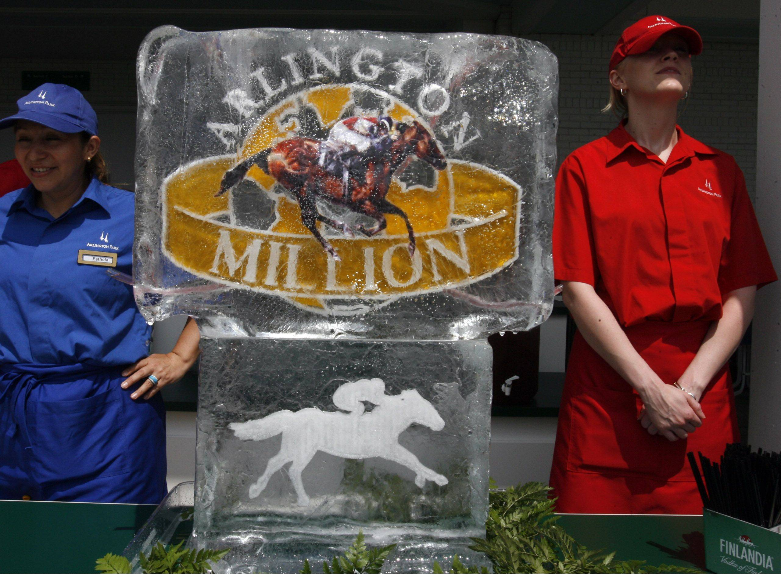 A Scene from the 27th Arlington Million.