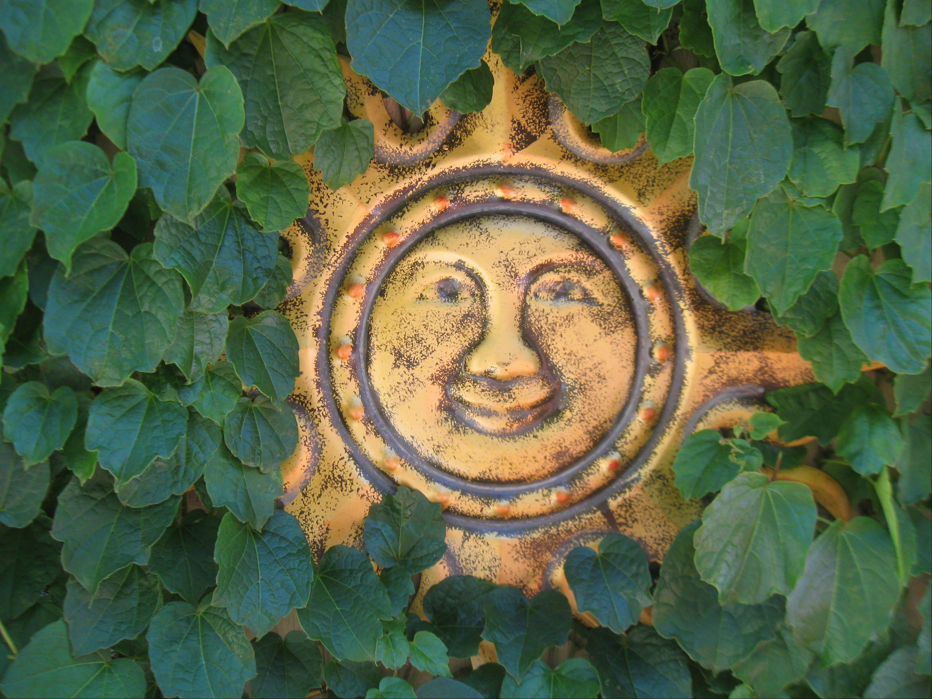 A hanging sunshine plate is surrounded with ivy at 908 McKinley in Mundelein near the pool area.