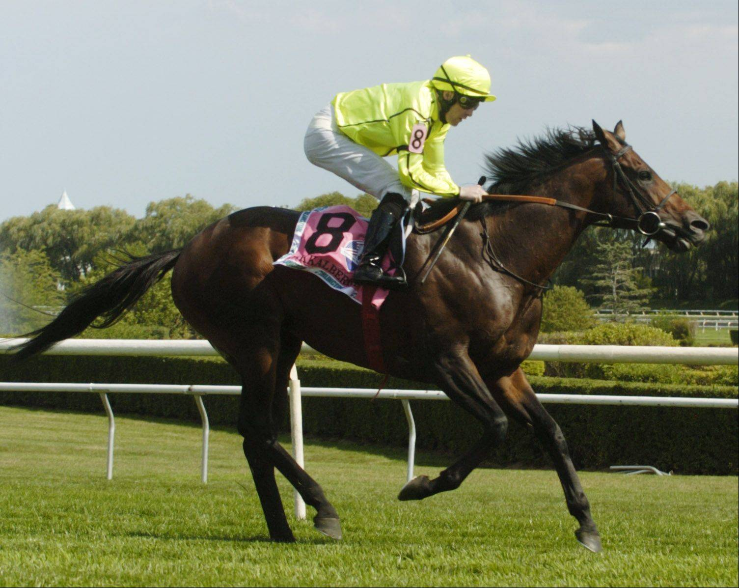 Jakkalberry, with jockey Colm O'Donoghue, is the winner of the St. Leger at Arlington Park on Saturday.