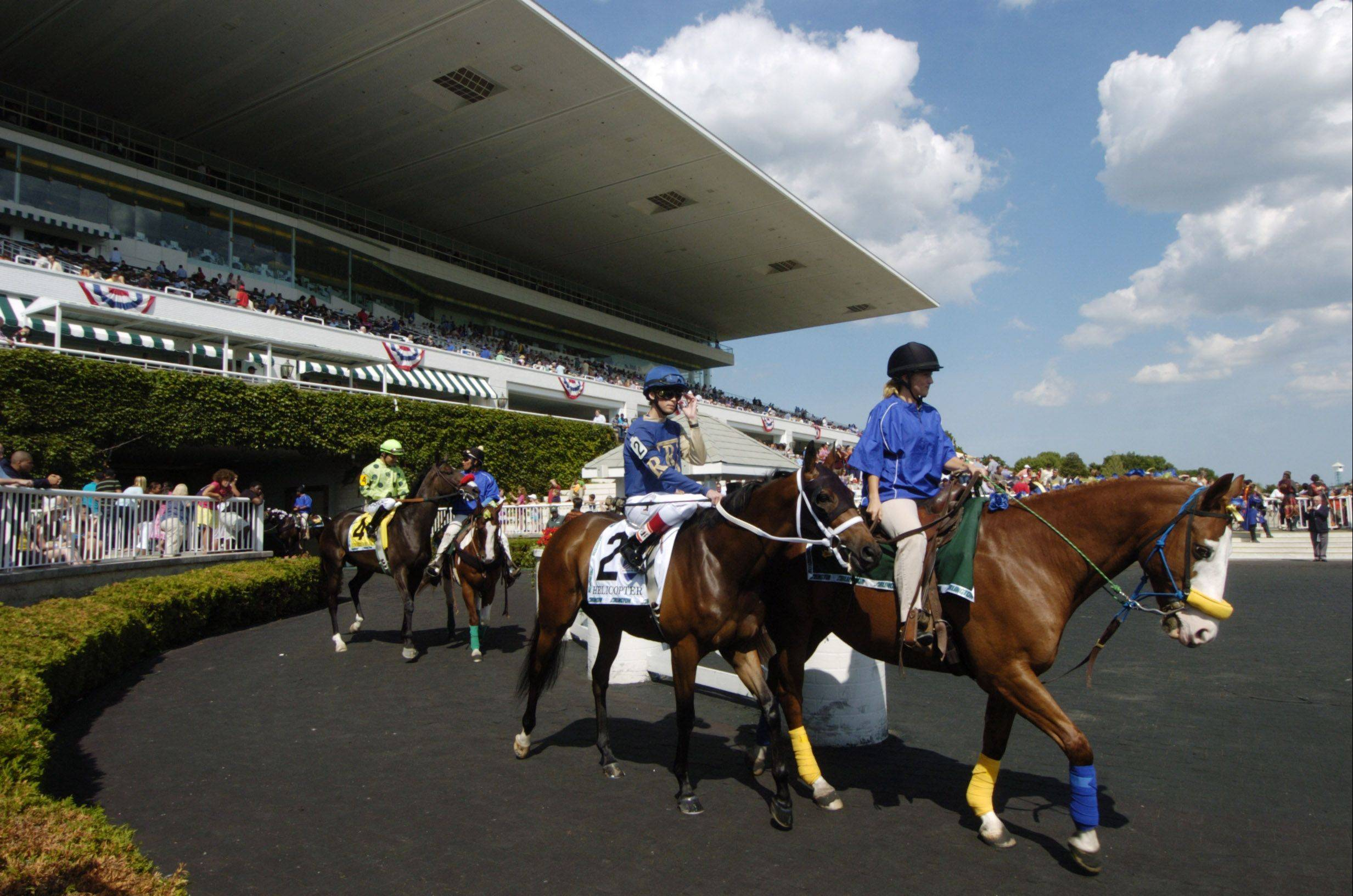The horses enter the track before the start Saturday of the American St. Leger at Arlington Park.