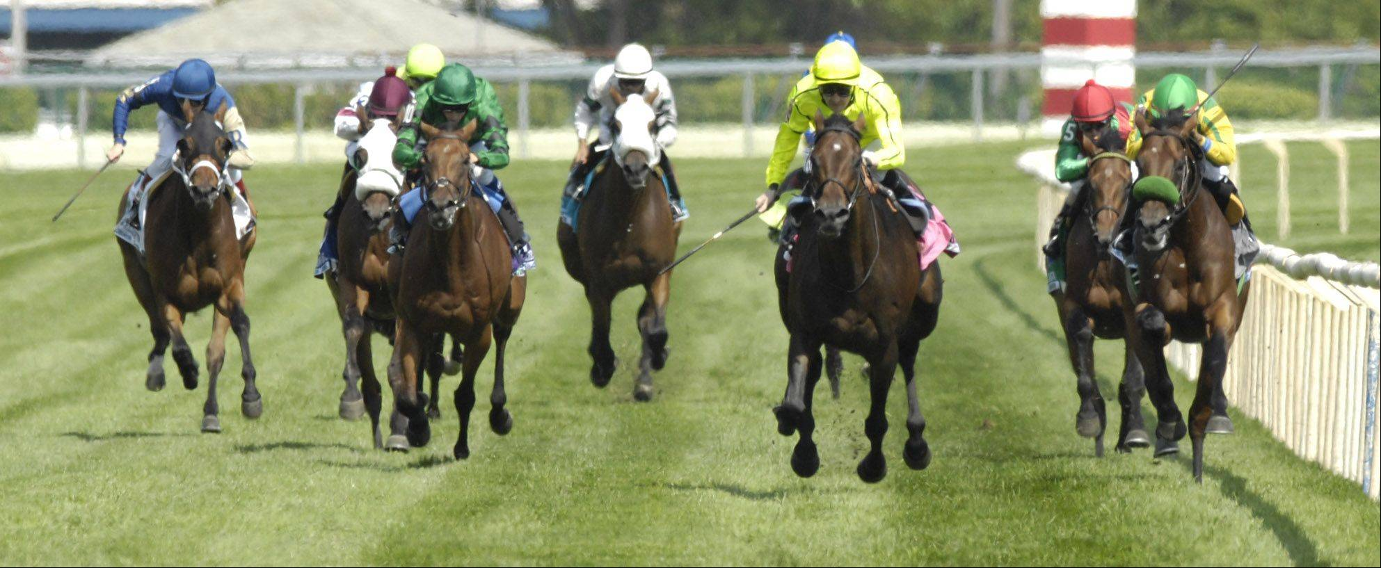 Jakkalberry, in yellow silks, center, wins the St. Leger at Arlington Park Saturday.