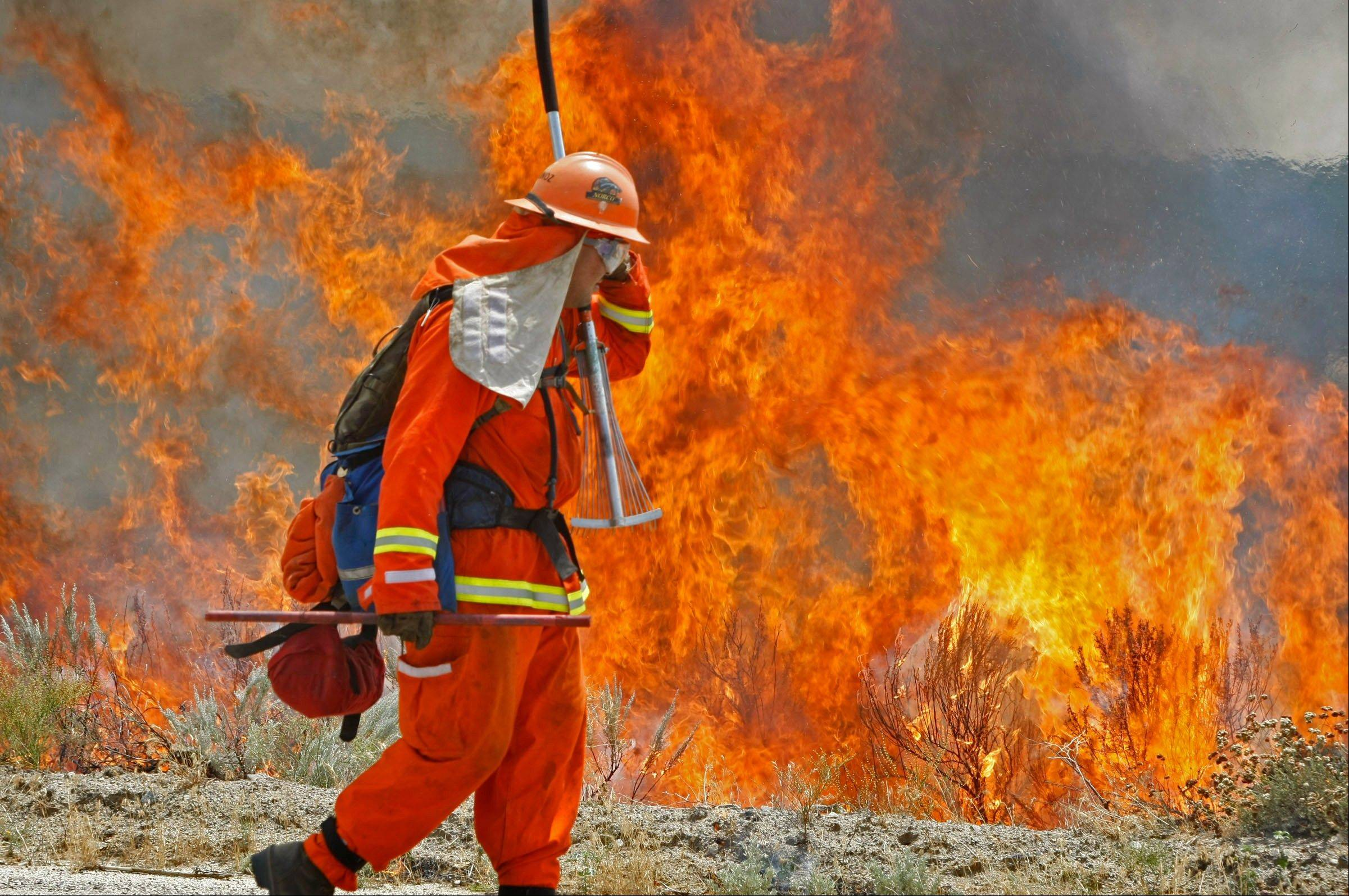 A firefighter from the Norco Conservation Camp shields his face against the heat of a backfire his crew intentionally set along Montezuma Valley road in Ranchita, Calif. on Thrusday, Aug 15, 2012. The backfire was set to stop the approaching wildfire burning through the Anza-Borrego Desert State Park in northern San Diego County.