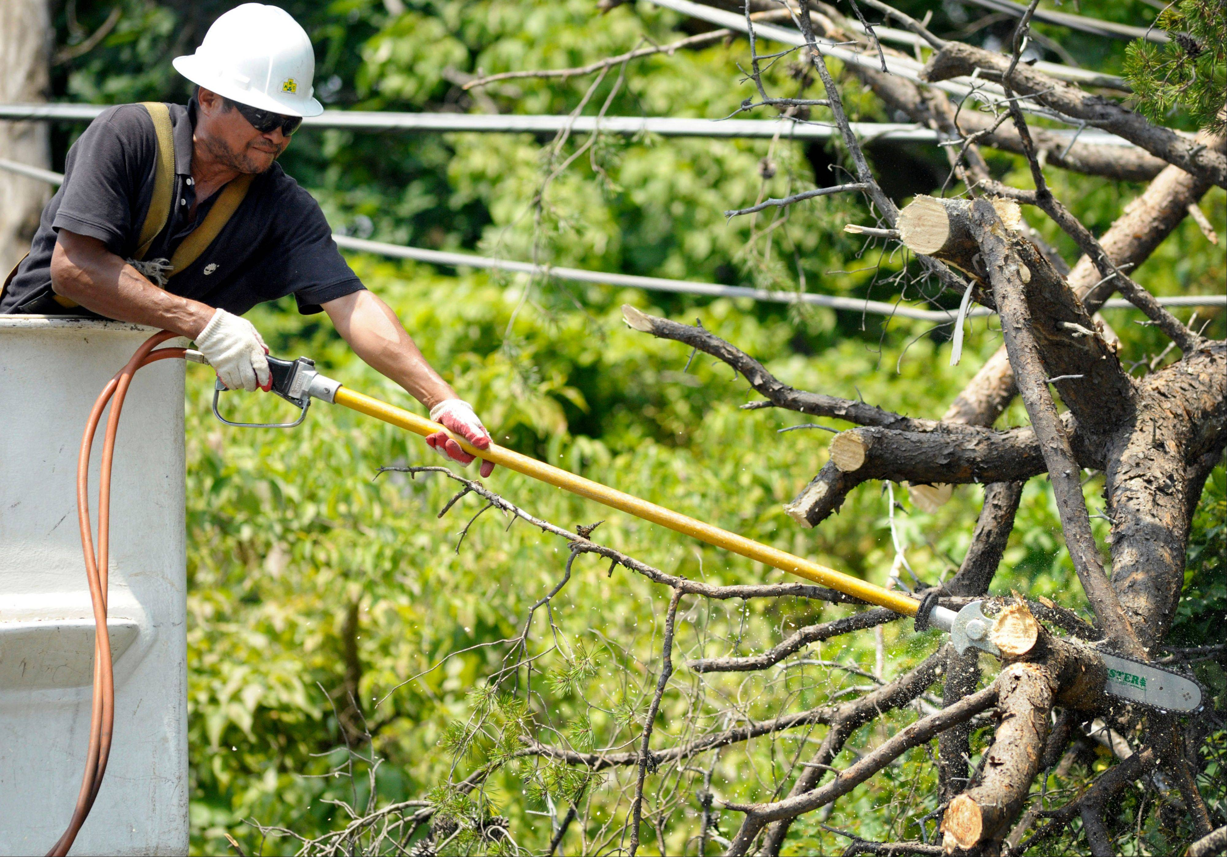 A utility worker clears a downed tree from power lines.