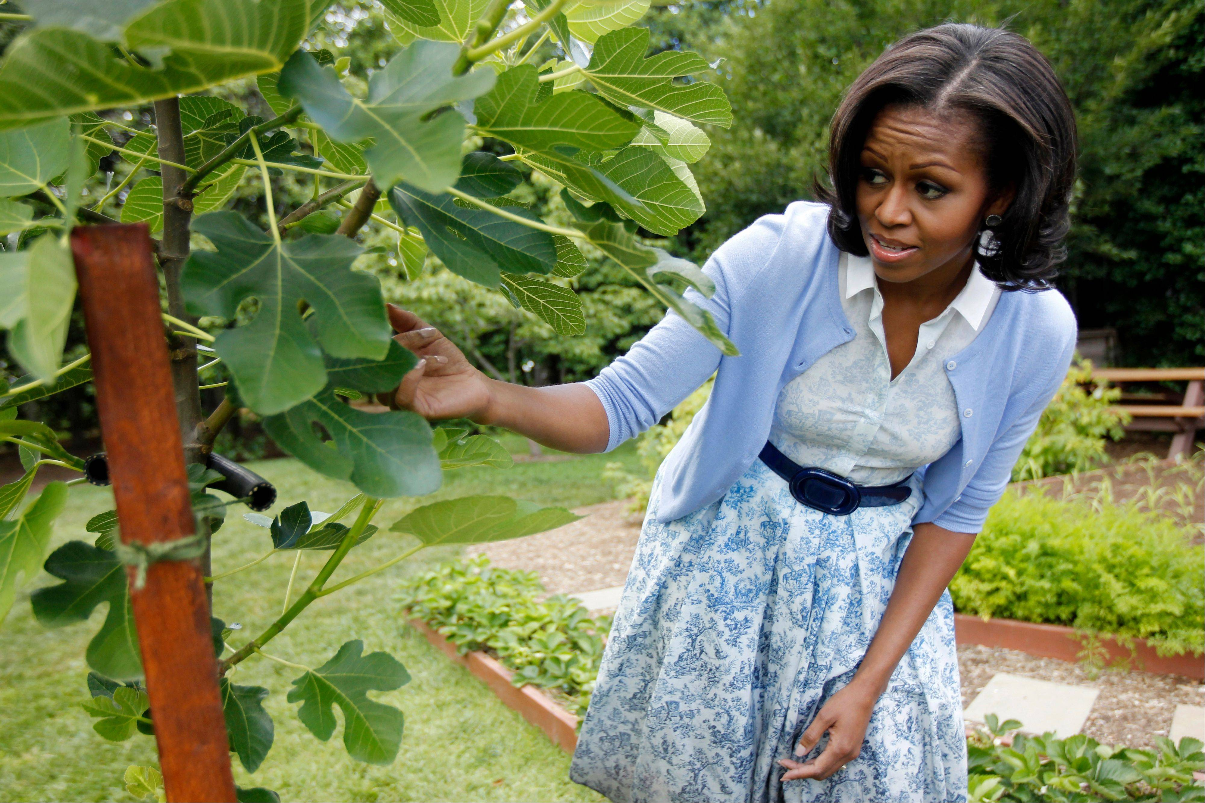 In this June 5, 2012, file photo, first lady Michelle Obama points out a fig tree as she talks about the White House Kitchen Garden during an interview with The Associated Press, on the South Lawn of the White House in Washington. She is 5-foot-11, and she is world-famous. Sometimes she inspires awe in her admirers. She has been accused of being the angry type. So when Michelle Obama meets people, she likes to bring things down to earth with a hug.
