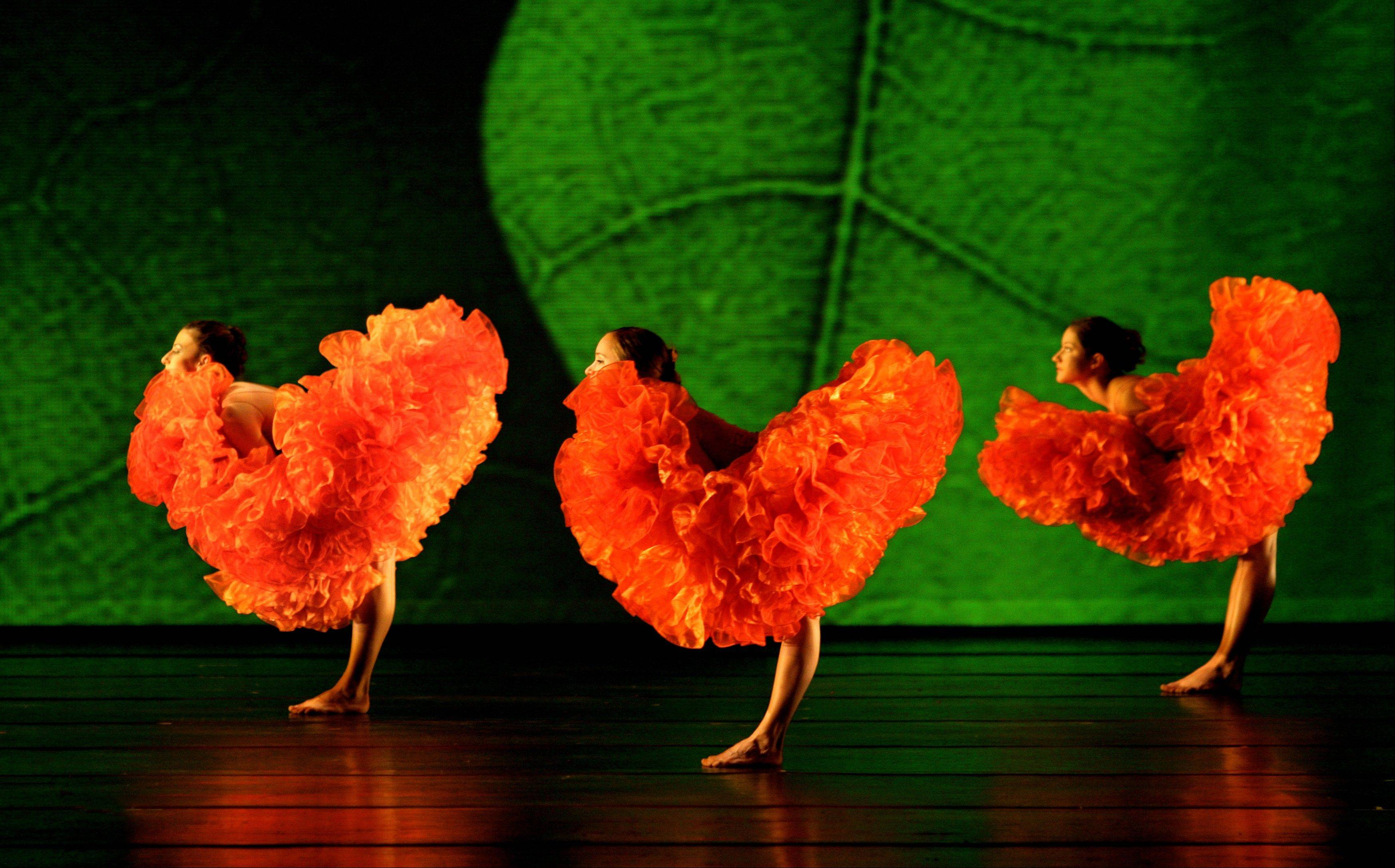 "The acclaimed modern dance troupe Momix performs Moses Pendleton's ""Botanica"" at the Ravinia Festival in Highland Park on Tuesday, Aug. 28."