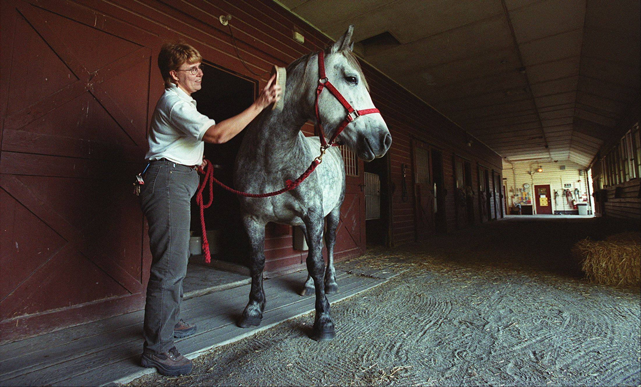 DuPage County Forest Preserve officials have outlined a five-year business plan to guide the Danada Equestrian Center.