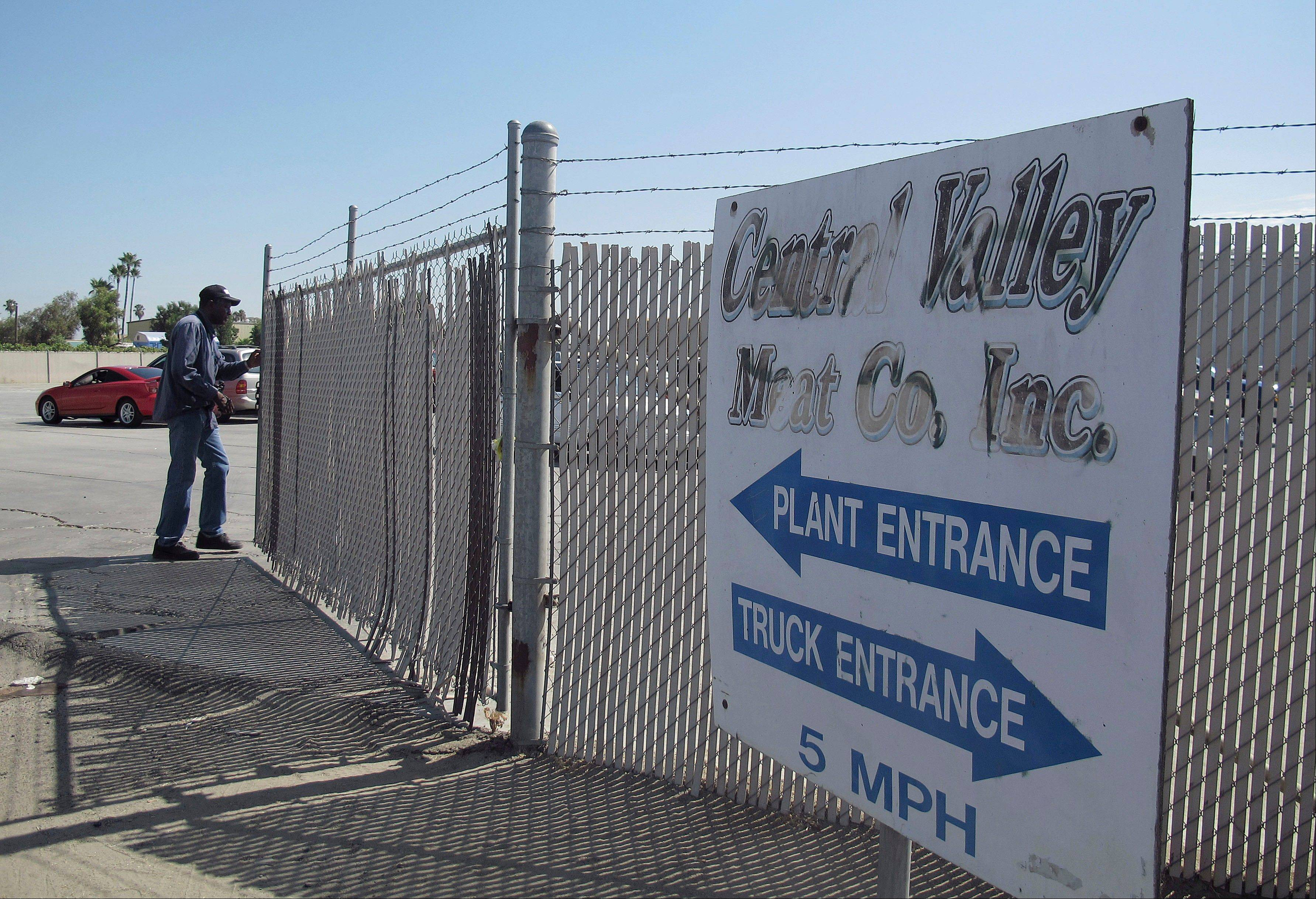 A security guard opens the gate at the Central Valley Meat Co., the California slaughterhouse shut down by federal regulators after they received video showing dairy cows being repeatedly shocked and shot before being slaughtered.