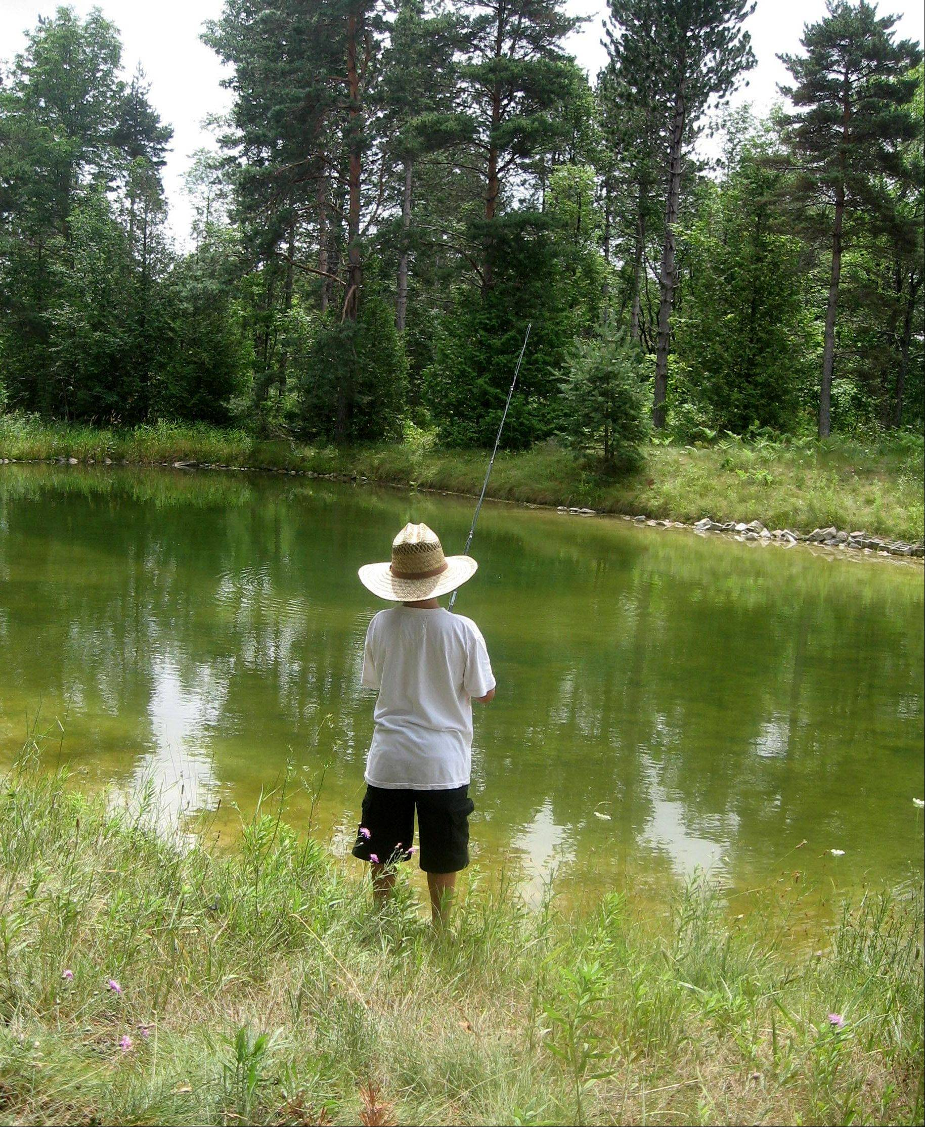 One of my favorite past times is to enjoy the outdoors, and to watch my son fish. This photo was taken at my Grandmother's farm in Petosky, Michigan.