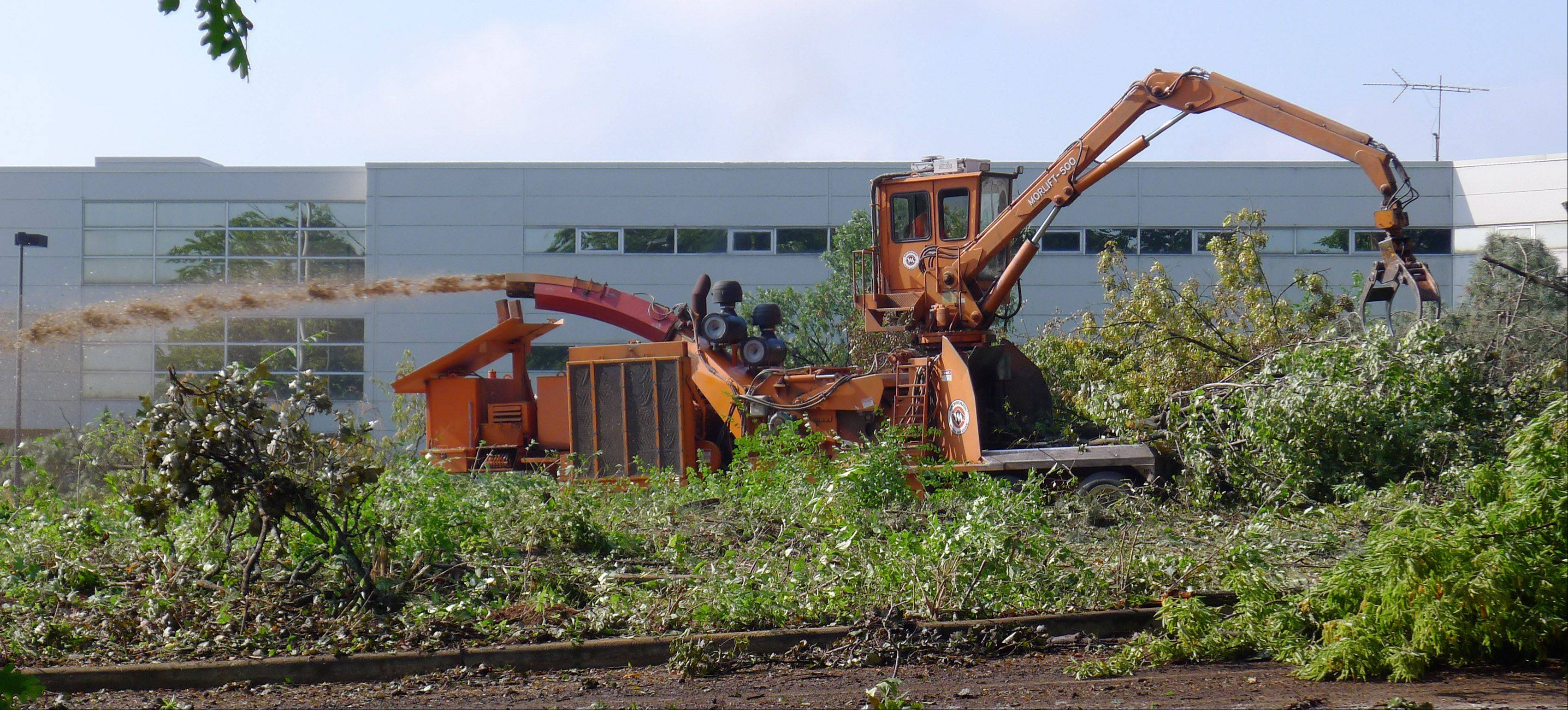 Crews are in the process of removing a significant portion of the trees at the location of a long-vacant corporate training center along Warrenville Road in Lisle. The existing building eventually will be razed to make room for a $35 million technical school.