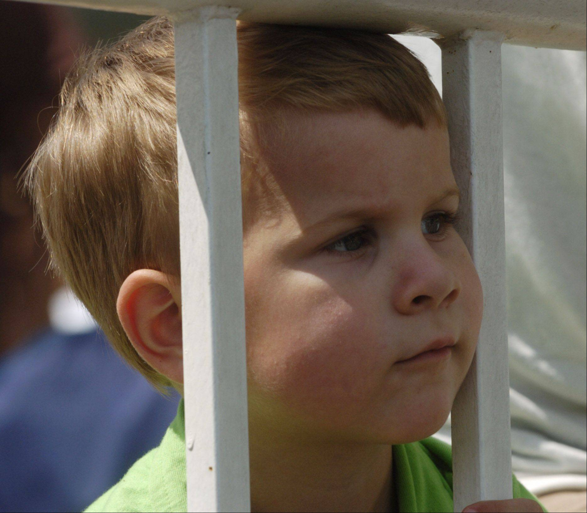 Aiden Pankow, 3, of Bartlett watches the horses during the Arlington Million at Arlington Park Saturday.