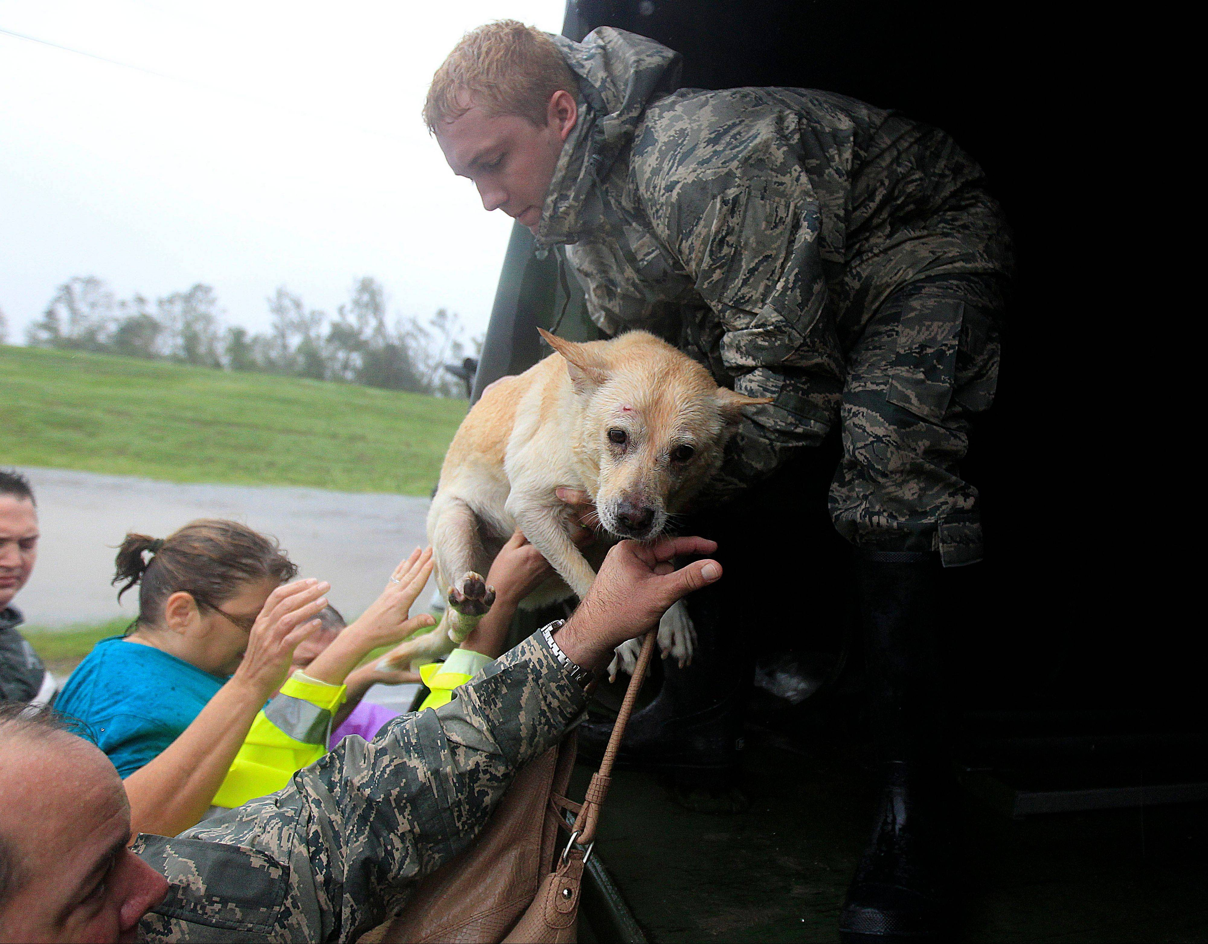 People and a dog who were rescued from their flooded homes are loaded into a Louisiana National Guard truck, after Hurricane Isaac made landfall and flooded homes with 10 feet of water in Braithwaite, La., in Plaquemines Parish Wednesday, Aug. 29, 2012.