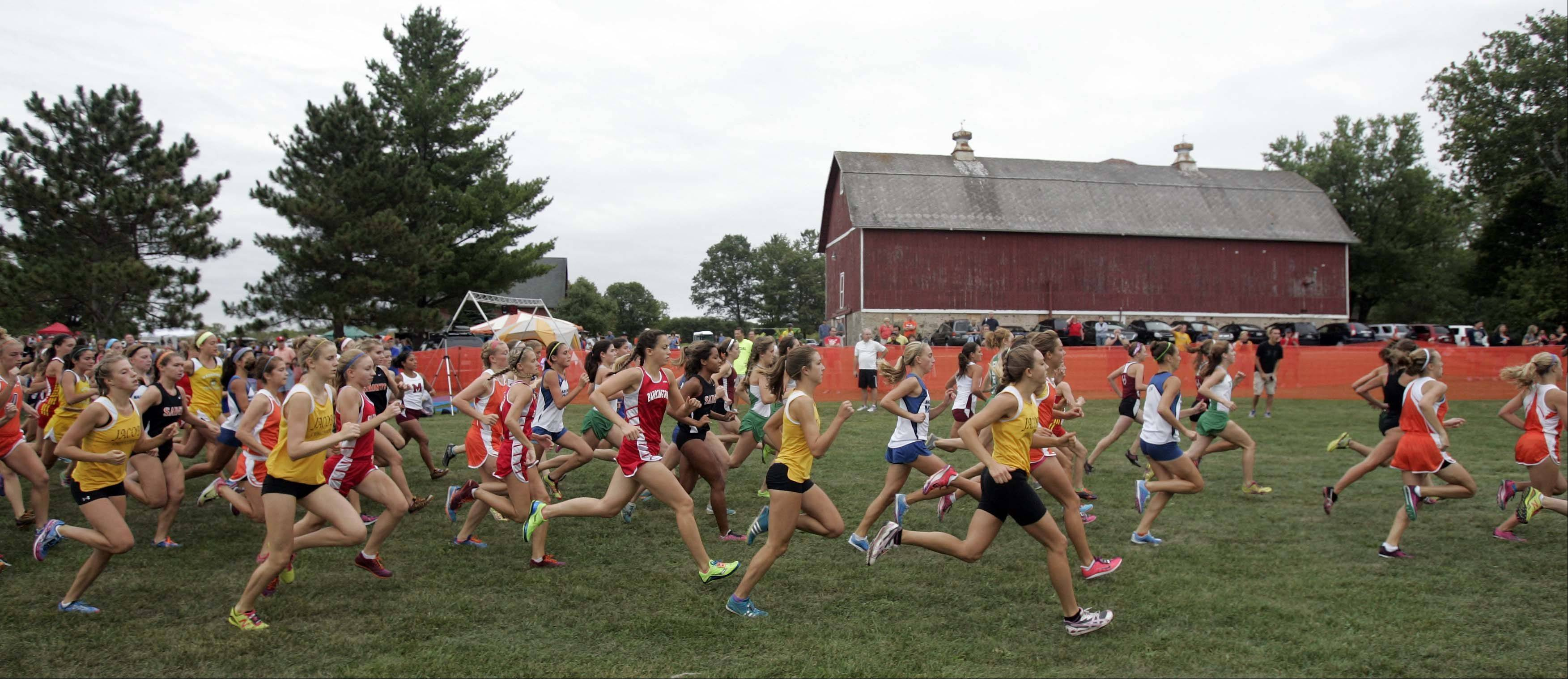 The start of the girls varsity race at the St. Charles East cross country meet at LeRoy Oakes in St. Charles Saturday September 1, 2012.