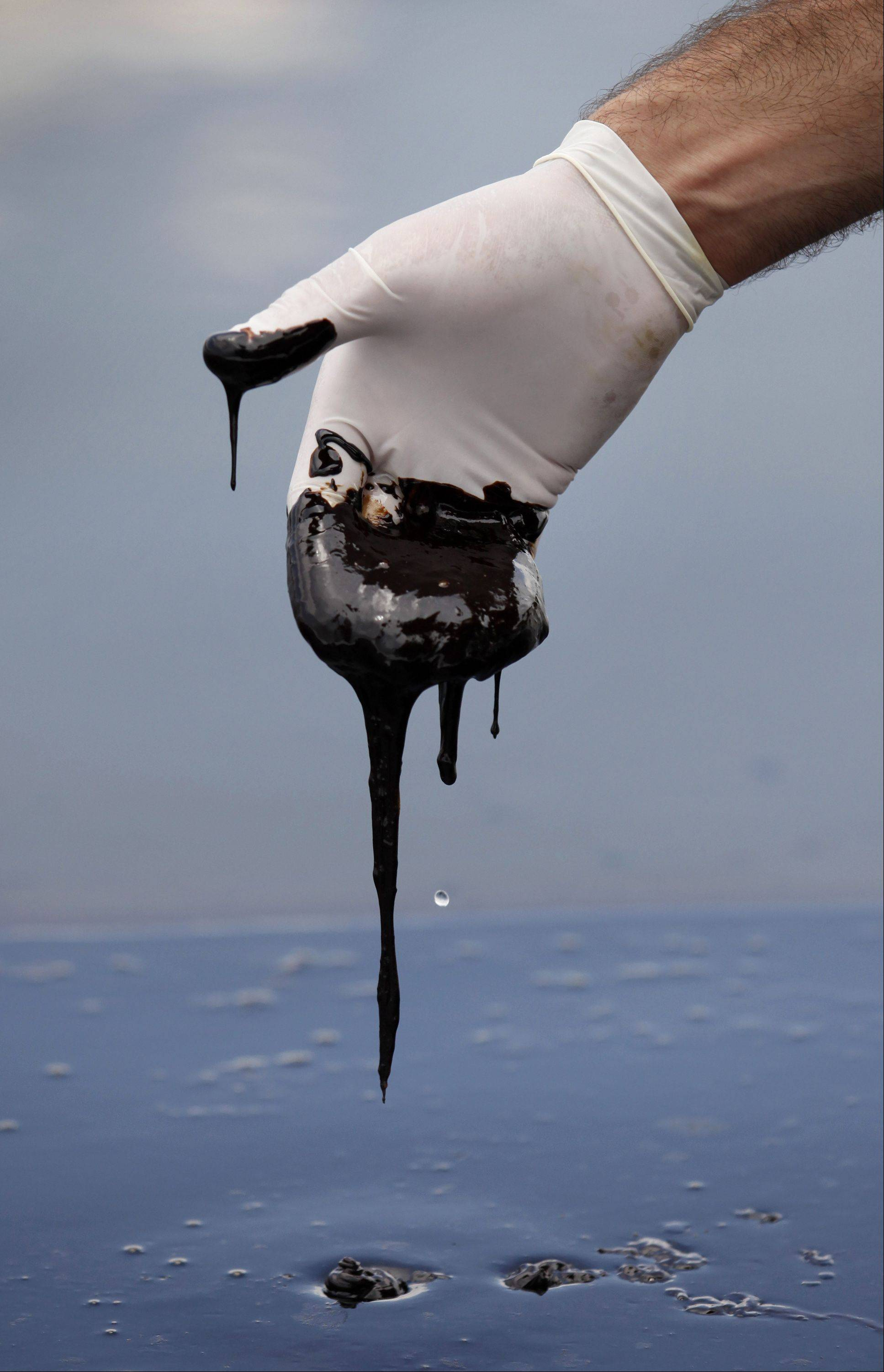 A member of Louisiana Gov. Bobby Jindal's staff reaches into thick oil in the Northern regions of Barataria Bay in Plaquemines Parish, La., Tuesday, June 15, 2010, following the Gulf oil spill.