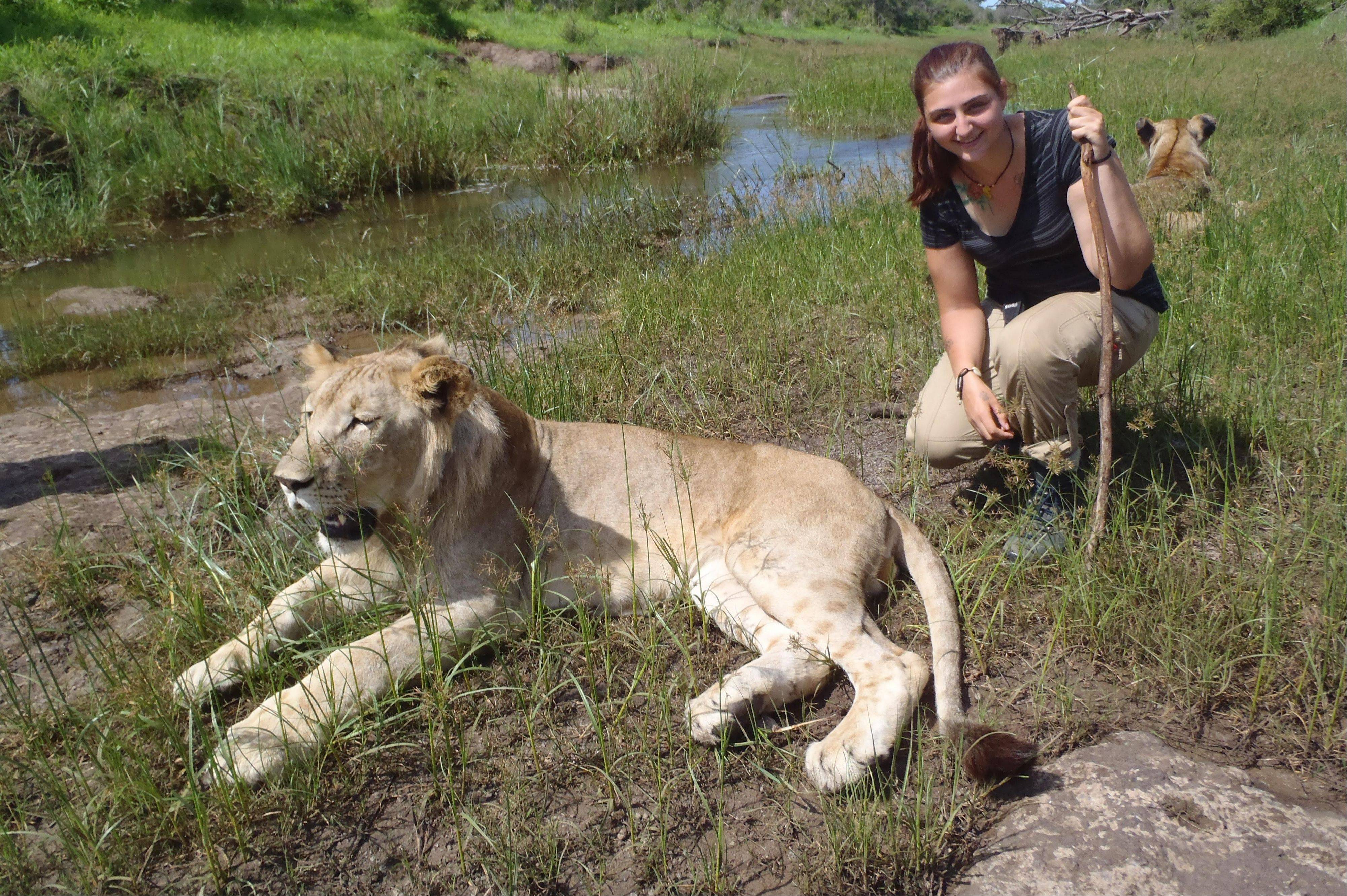 Dana de Grazia helped raise lion cubs as part of her work.