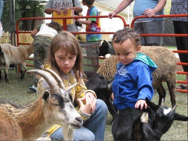 Live farm animals will be featured during Elk Grove Park District's Pioneer Day celebration from 1 to 5 p.m. Sunday, Sept. 16.