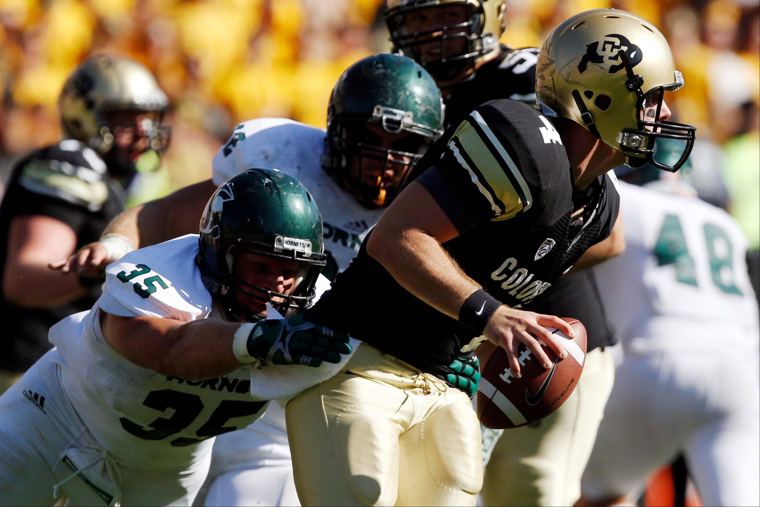 Sacramento State defensive lineman Jaycee Totty, left, pulls down Colorado quarterback Jordan Webb for a sack in the fourth quarter of their NCAA college football game in Boulder, Colo., Saturday. Sacramento State won 30-28.
