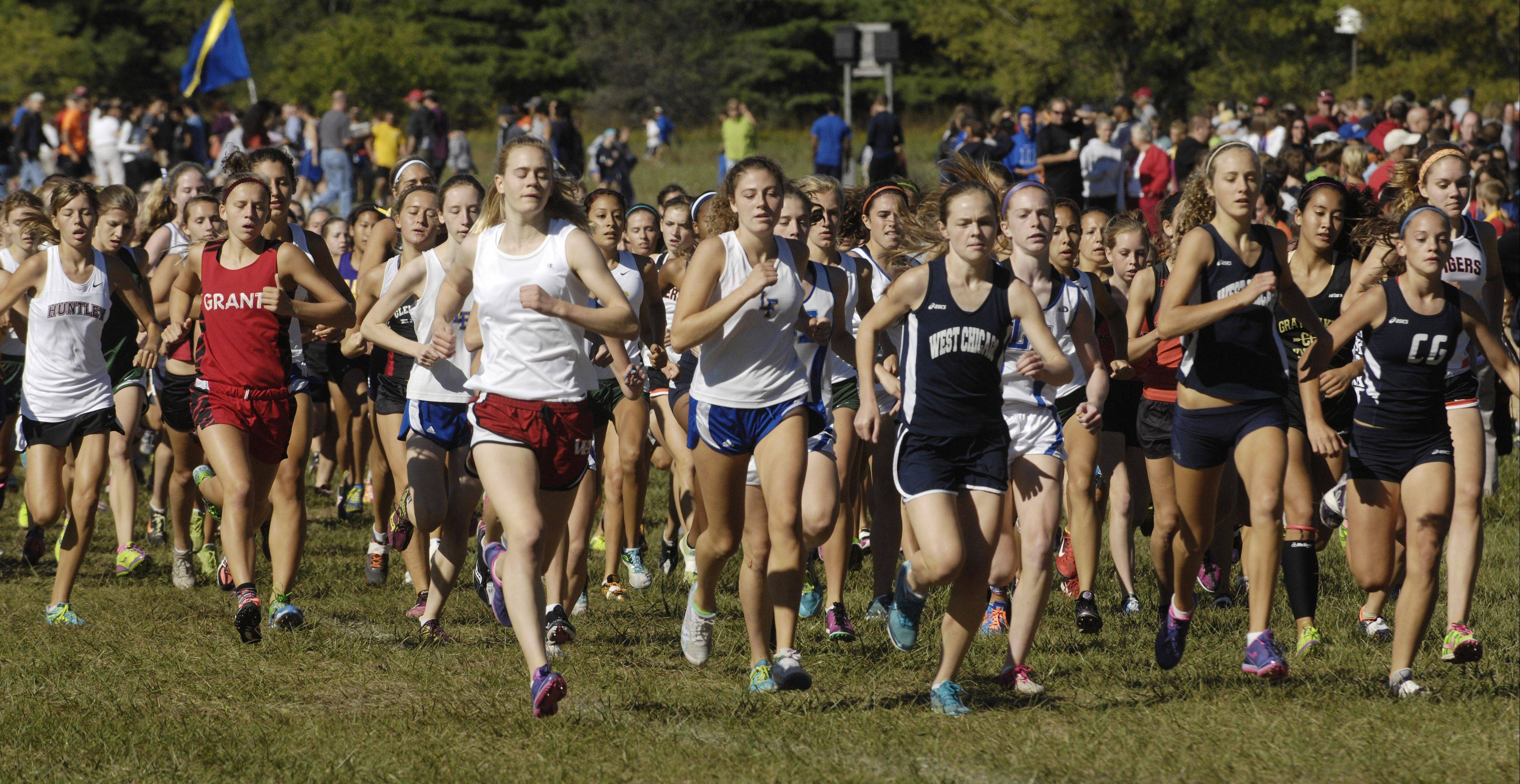 And they're off ... in the varsity girls race of the Wauconda Invitational at Lakewood Forest Preserve on Saturday.