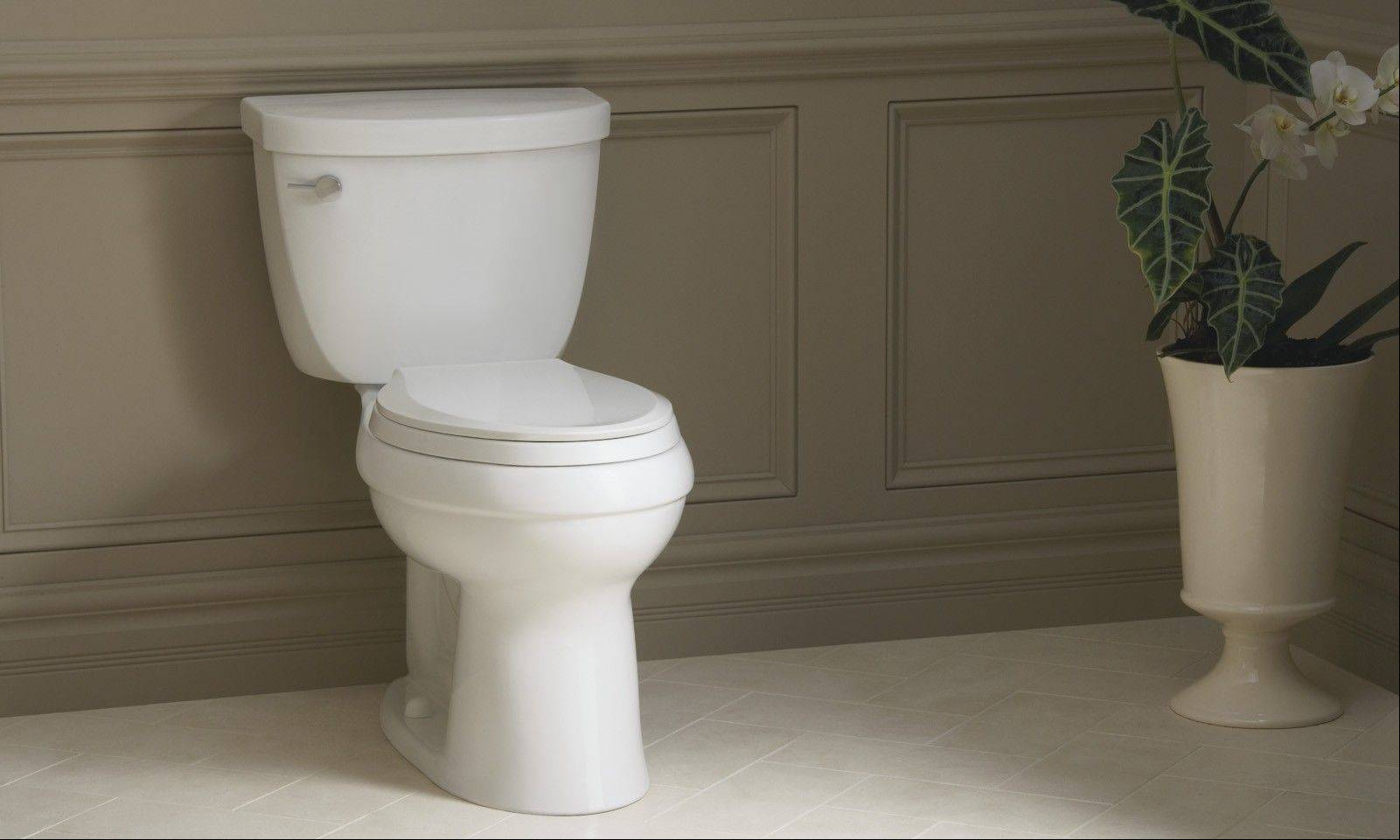 There are many things to consider when purchasing a new toilet.