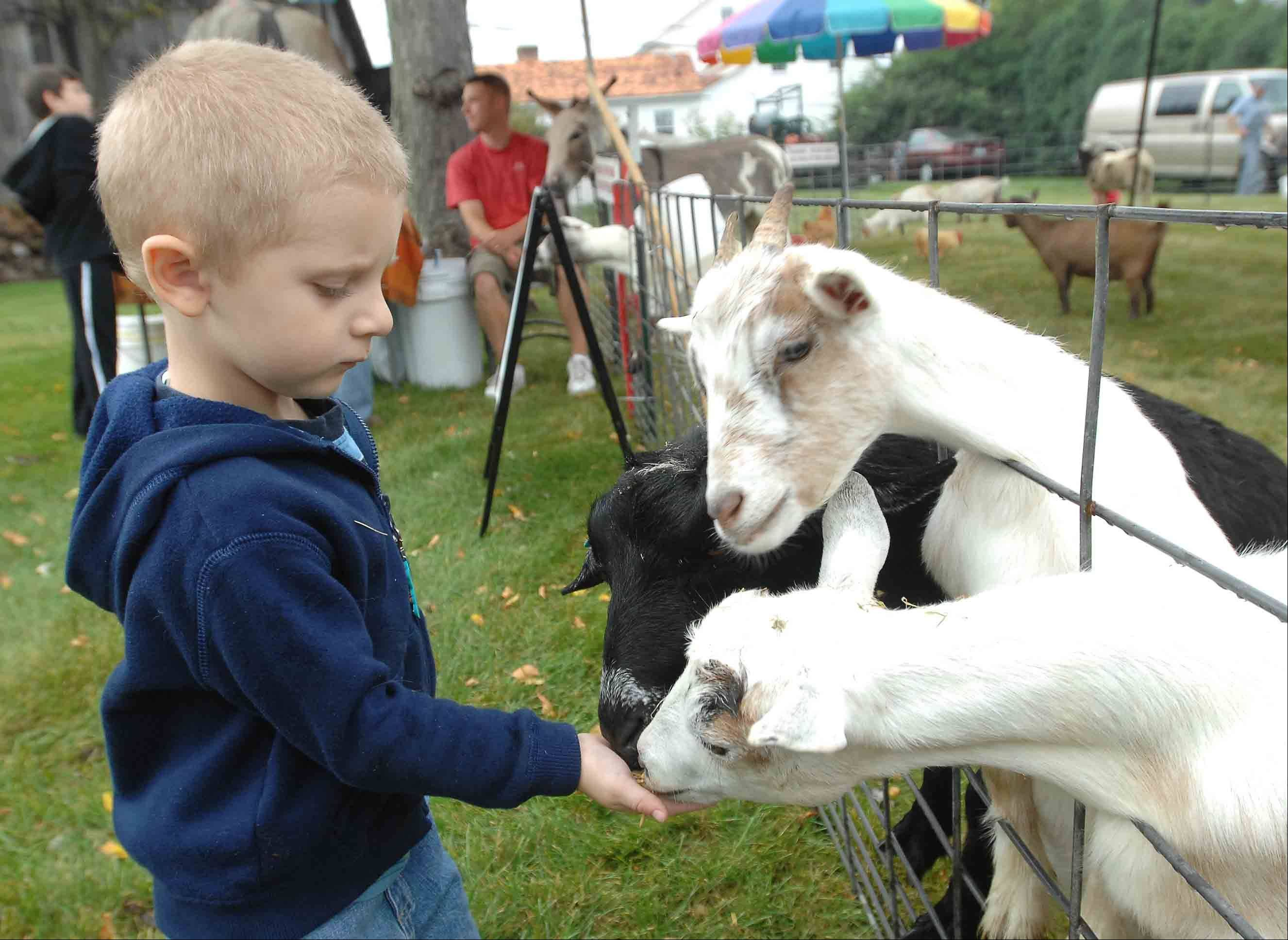 Children can make some new friends when Miller's Petting Zoo visits the Museums at Lisle Station Park for Depot Days.