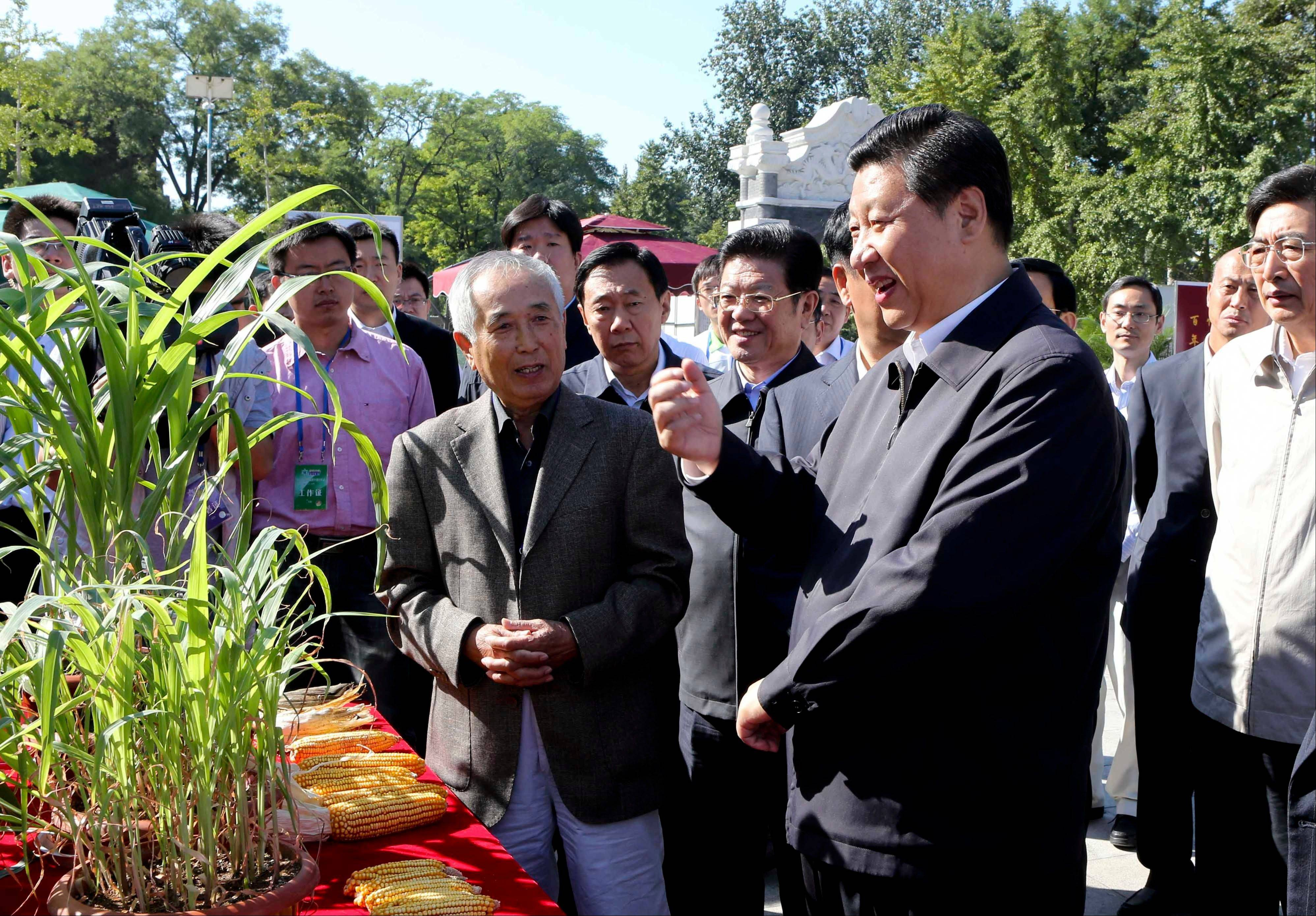 Associatewd P{ress/Courtesy of Xinhua News Agency Chinese Vice President Xi Jinping, front right, attends an activity Saturday to mark this year's National Science Popularization Day at China Agricultural University in Beijing.