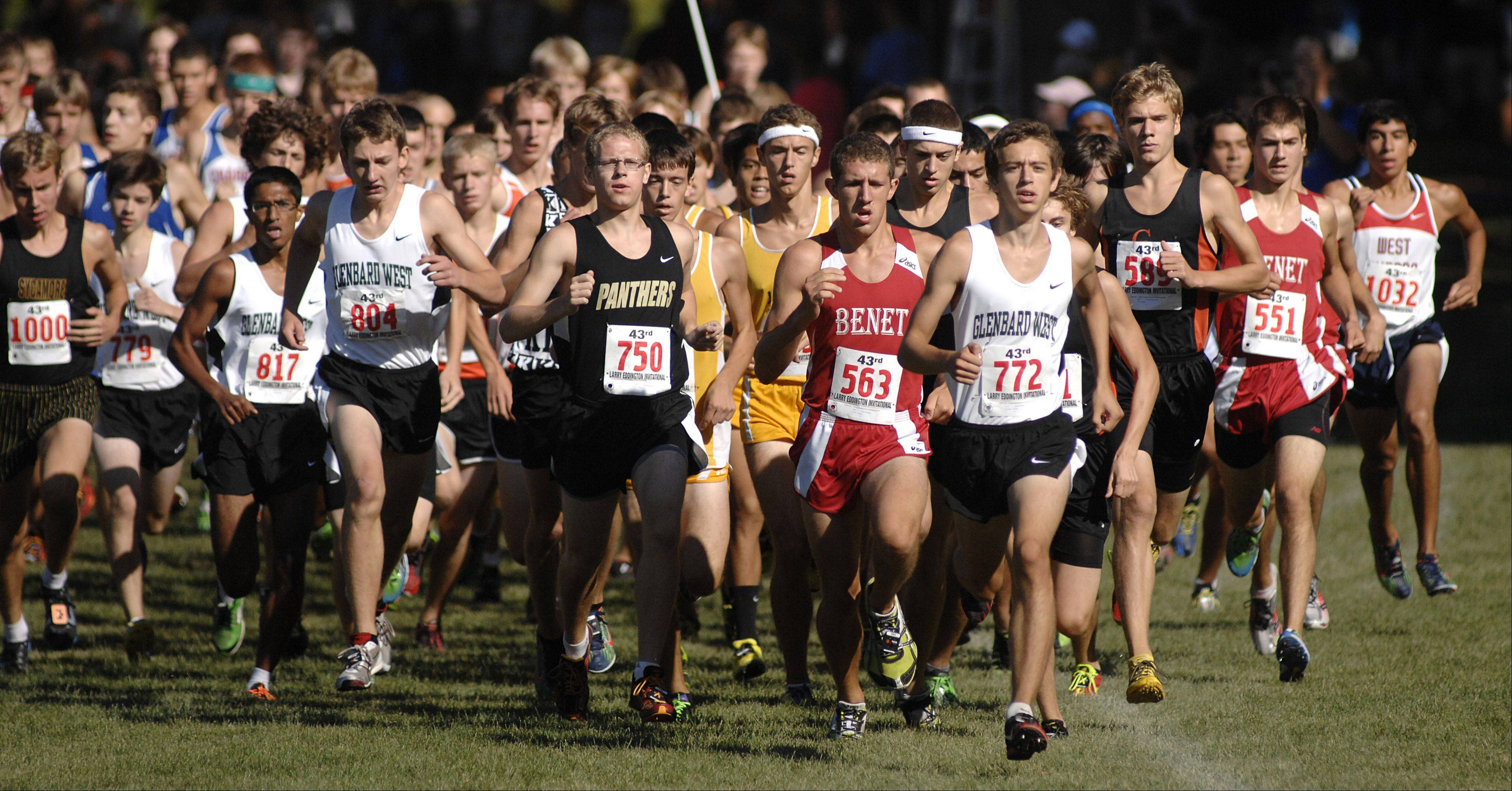 Start of the boys varsity race at the Kaneland Eddington Invitational in Elburn on Saturday, September 15. Benet's Anton Vershay (563) and Glenbard West's Brandon Bonifer (772) in front of pack.