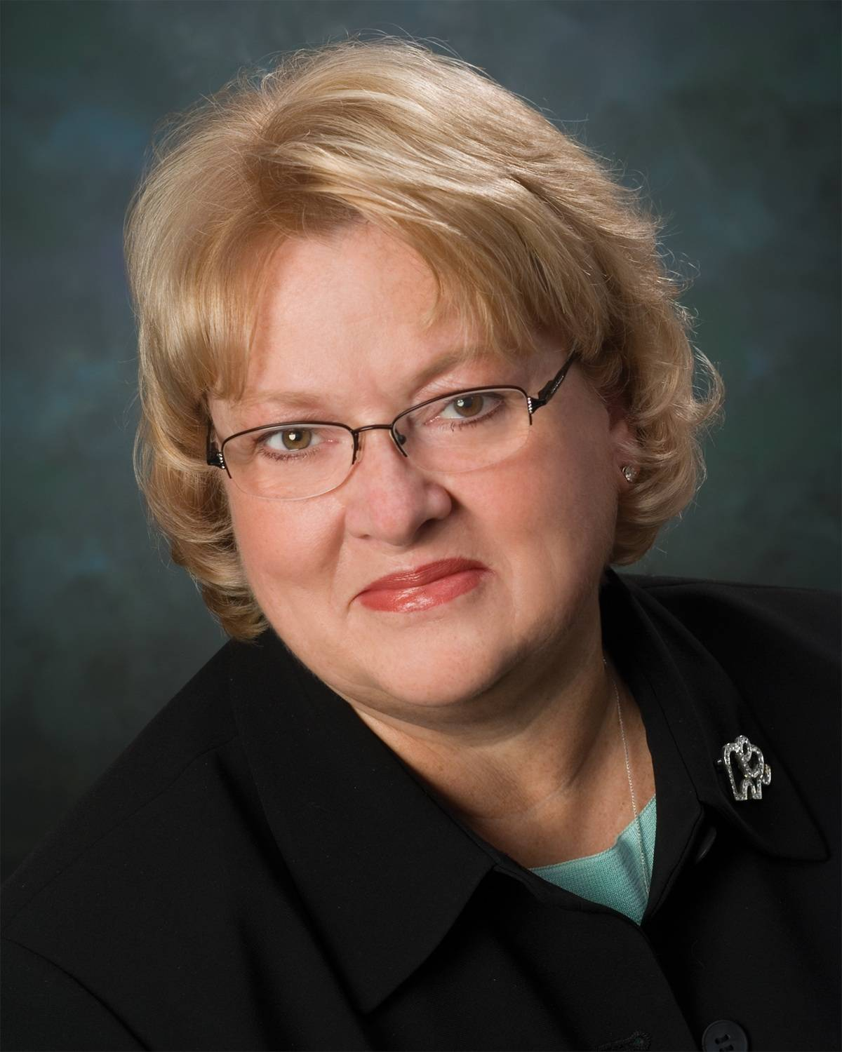 Linda Pedersen, running for Lake County board District 1