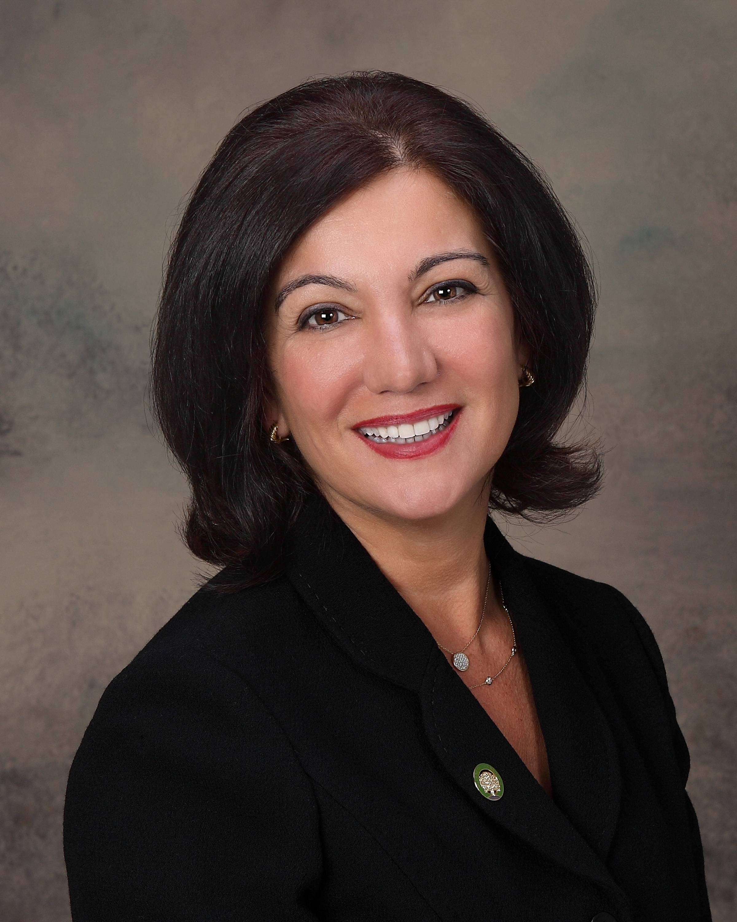Elaine Zannis, running for DuPage County board District 2