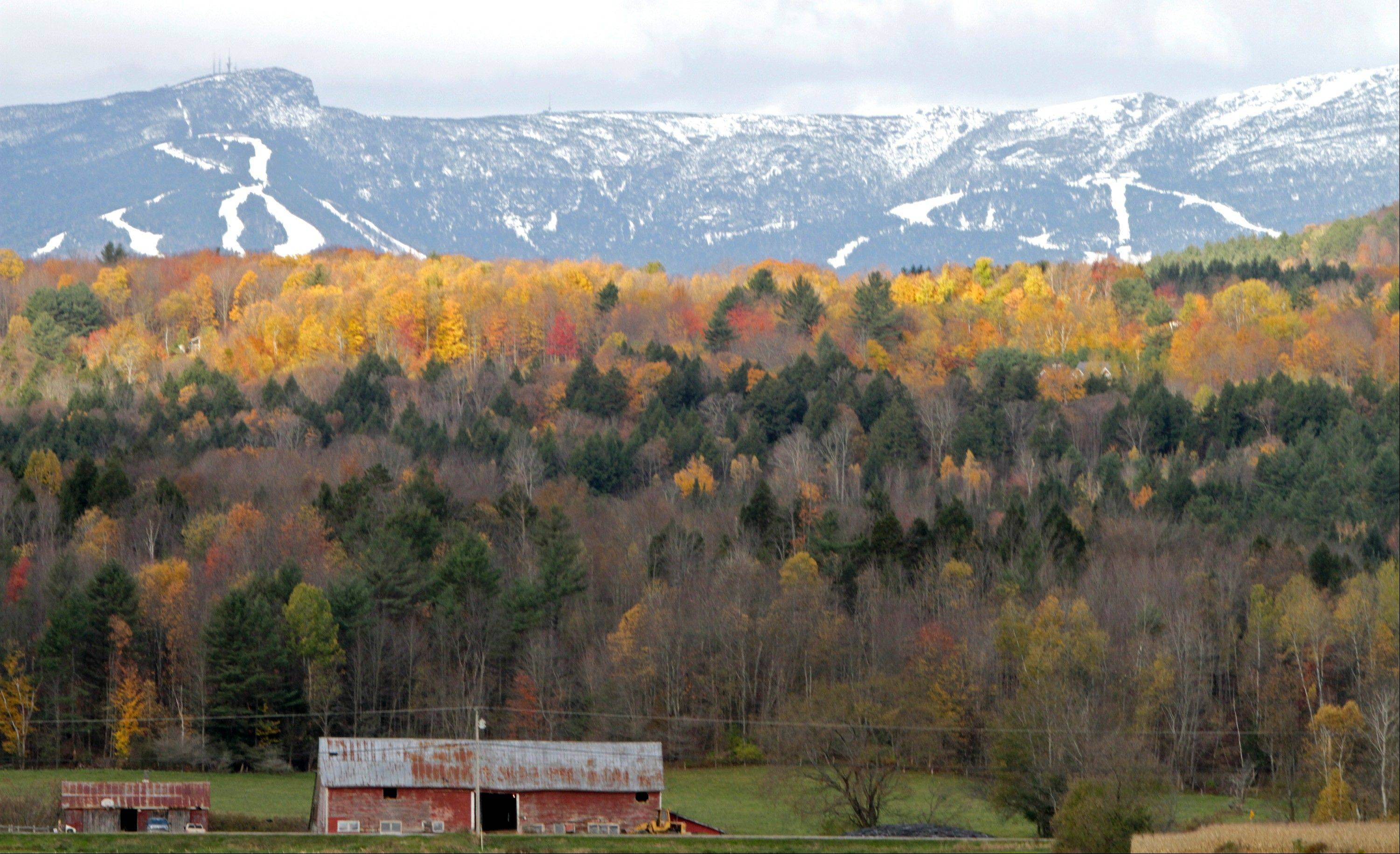 Sunlight falls on remaining bright foliage as the snow-capped ski trails of the Stowe ski resort are seen on the side of Mt. Mansfield.