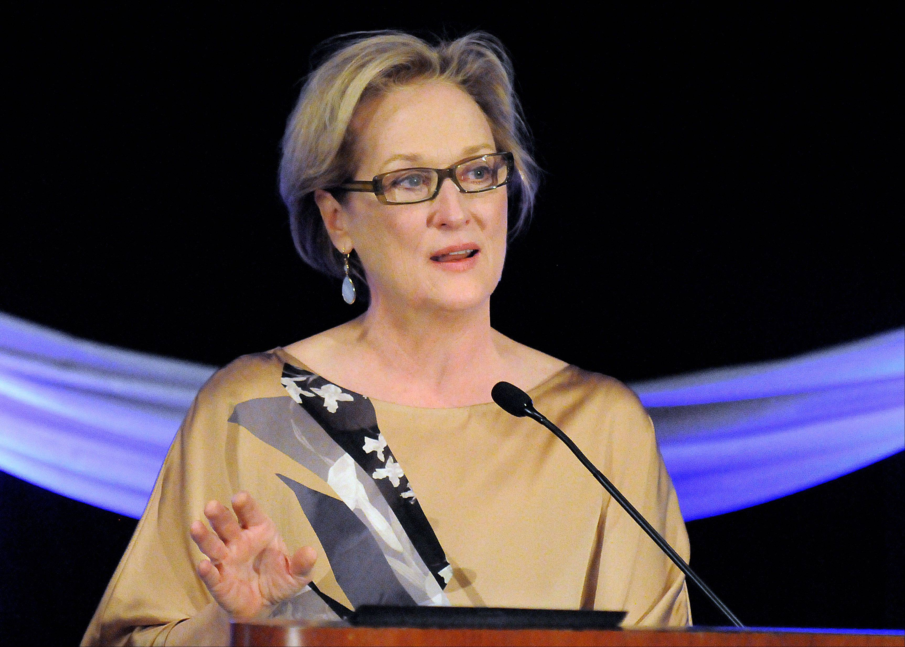 Meryl Streep speaks at a fundraiser for The Charlie Foundation to Help Cure Pediatric Epilepsy at Hilton Chicago Indian Lakes Resort in Bloomingdale on Friday.
