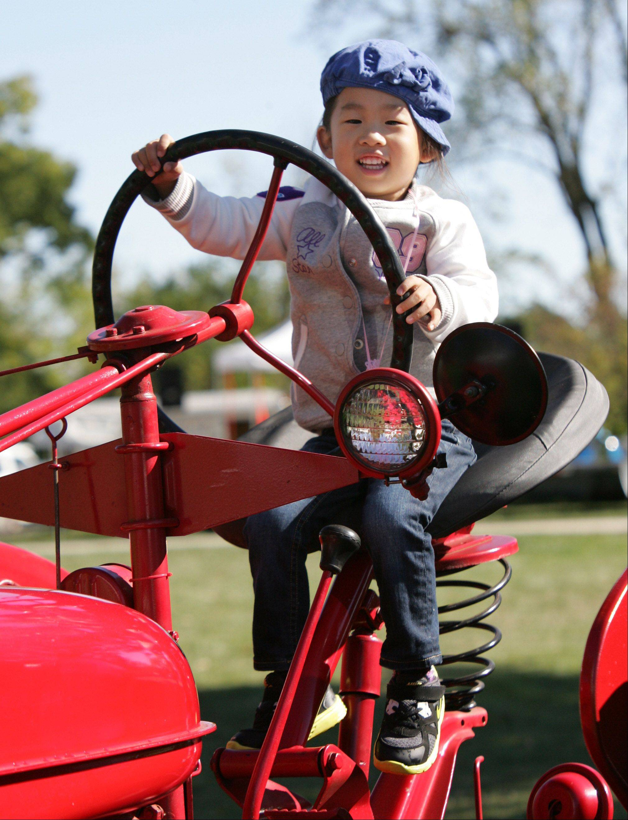 Gina Chung, 3, of Buffalo Grove, pretends to drive a 1950 McCormick Farmall tractor during the 20th Annual Farm Heritage Festival Sunday at Lakewood Forest Preserve near Wauconda. The event was co-sponsored by the Lake County Discovery Museum and the Lake County Farm Heritage Association.