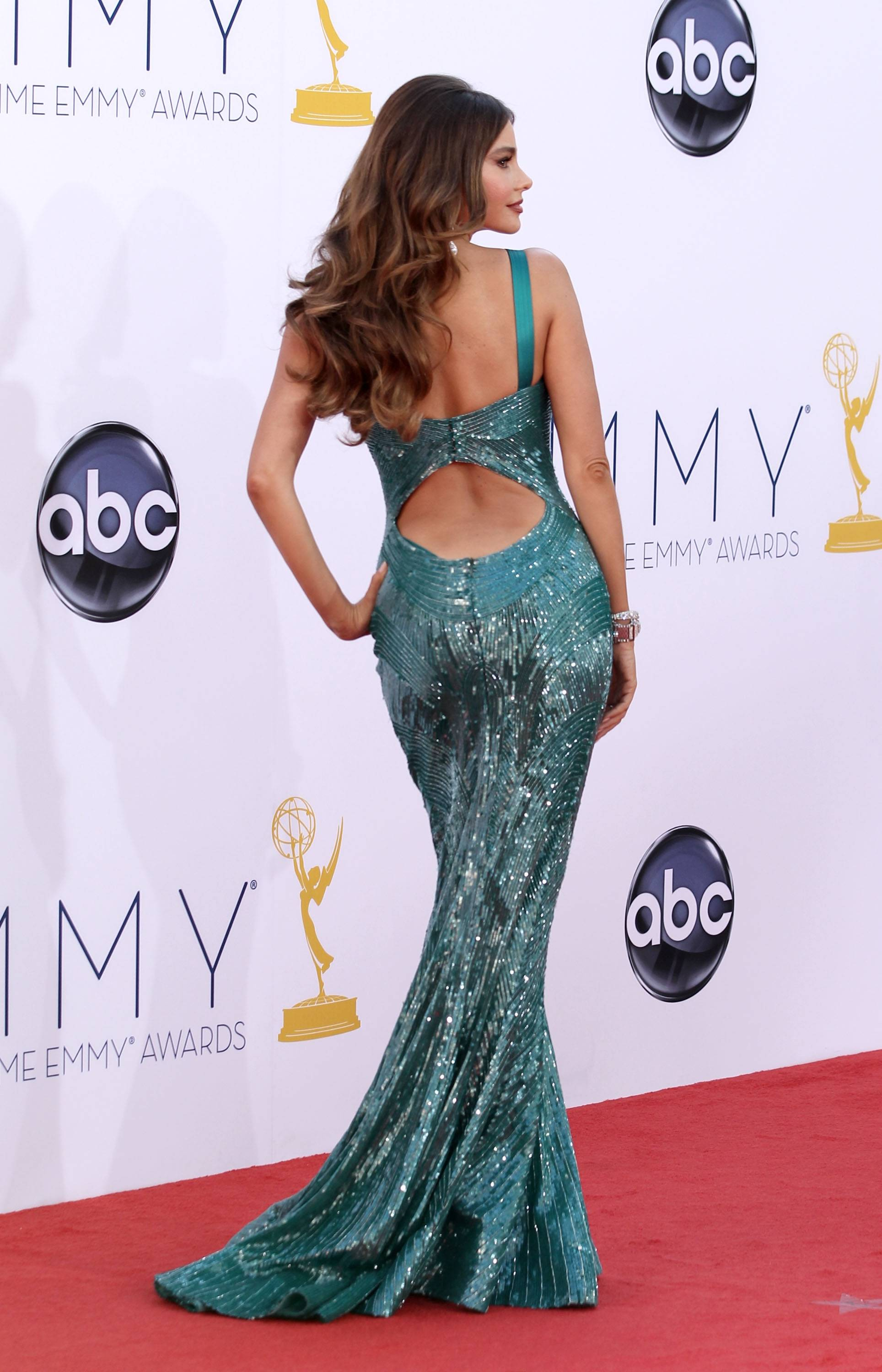 """Modern Family"" funny woman Sophia Vergara brings a little vavavoom to the red carpet."