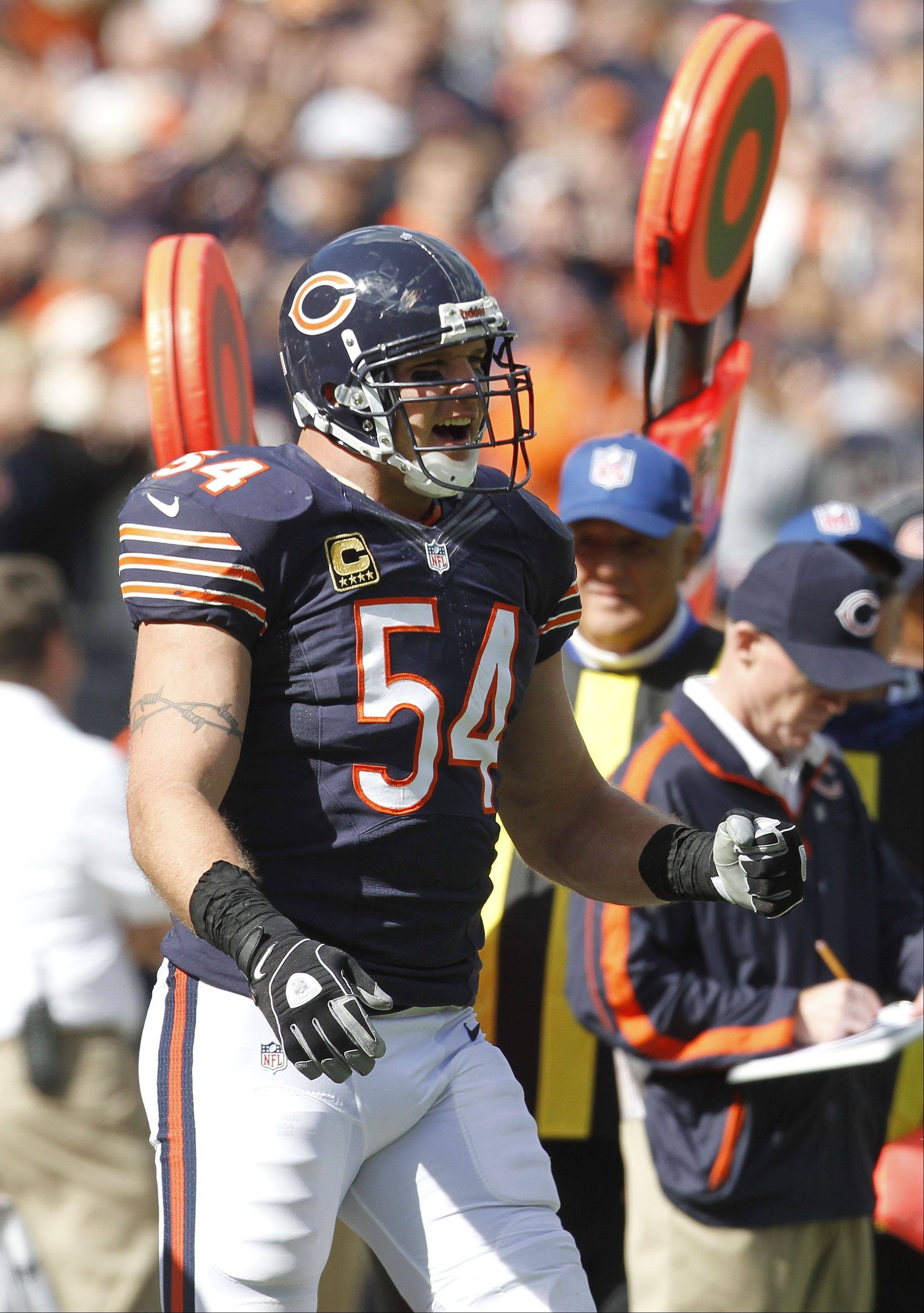 Chicago Bears linebacker Brian Urlacher celebrates after Major Wright's pick 6 during the Bears 23-6 win over the St. Louis Rams Sunday at Soldier Field in Chicago.