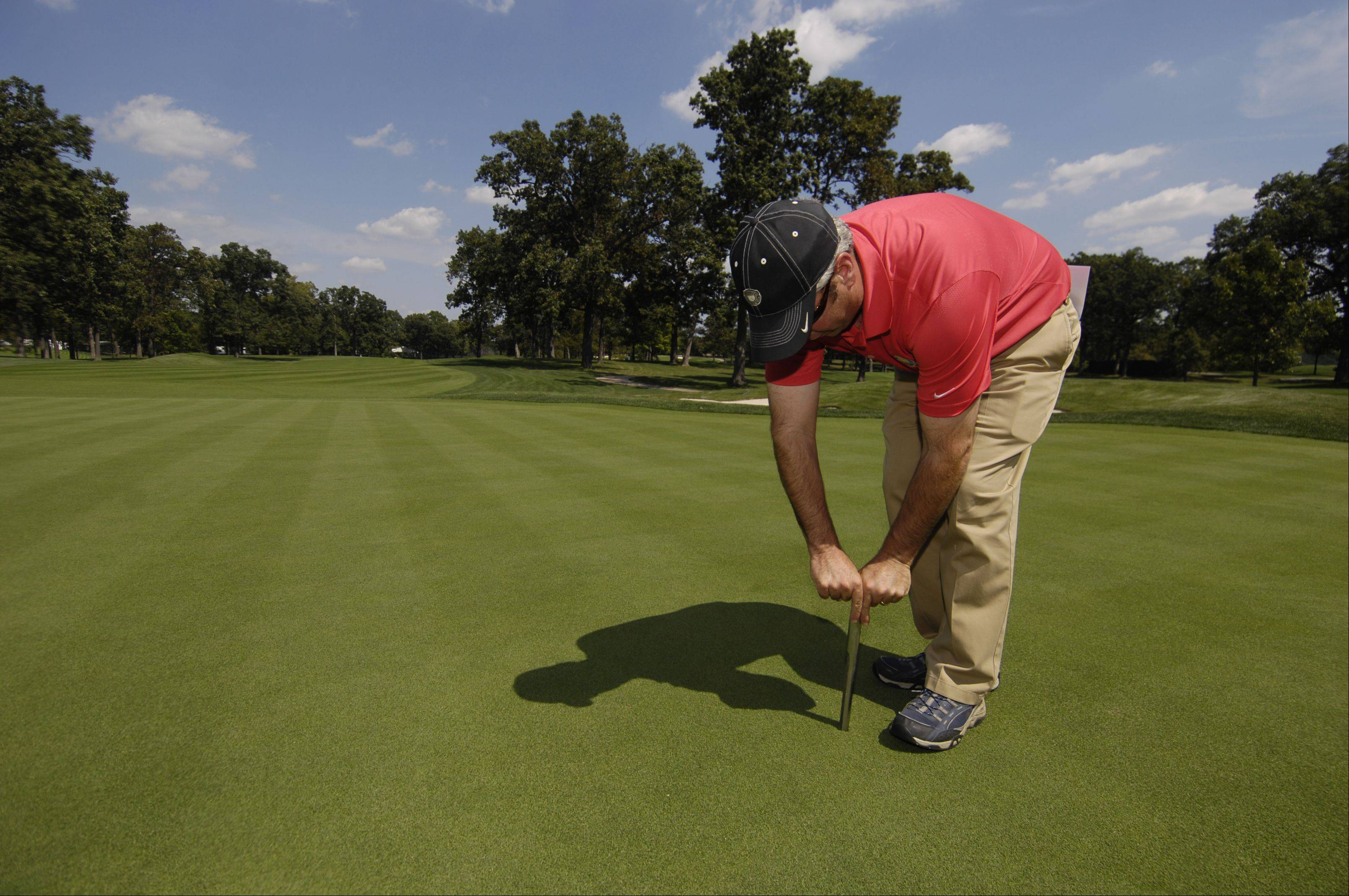Curtis Tyrrell, director of golf course operations at Medinah Country Club, pulls a sample of grass to test.