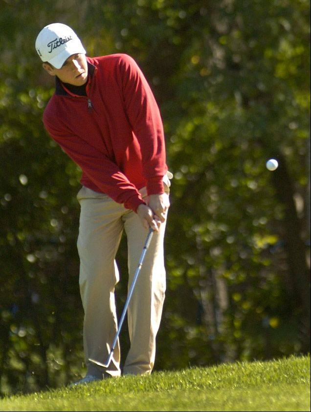Barrington's Greg Conrad chips on to the eighth green during the Mid-Suburban League meet at Arlington Lakes.