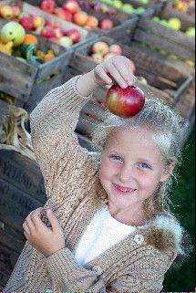 Apples and apple treats are the stars of the annual Long Grove Apple Fest.