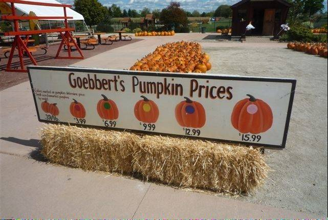 With the 75-acre field in Hampshire turning out a good crop of pumpkins, prices remain the same as last year at Goebbert's Farm & Garden Center in South Barrington.