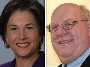 Democrat Jan Schakowsky opposes Republican Timothy Wolfe in the 9th Congressional District.