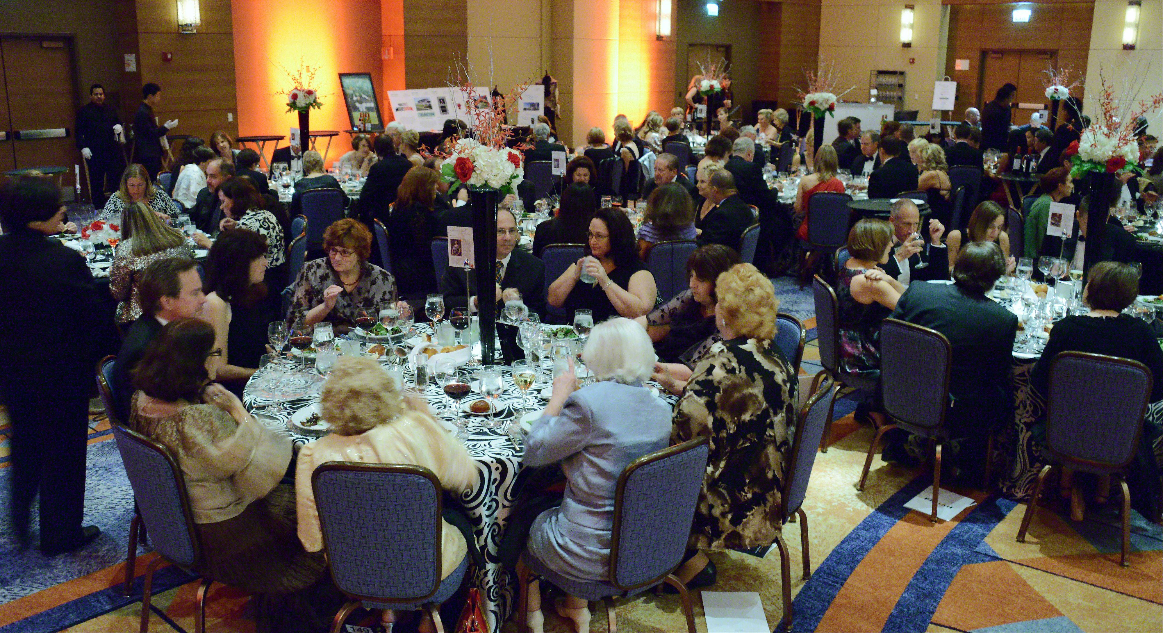 More than 400 people attended the gala fundraiser for the Harper College Educational Foundation in Schaumburg.