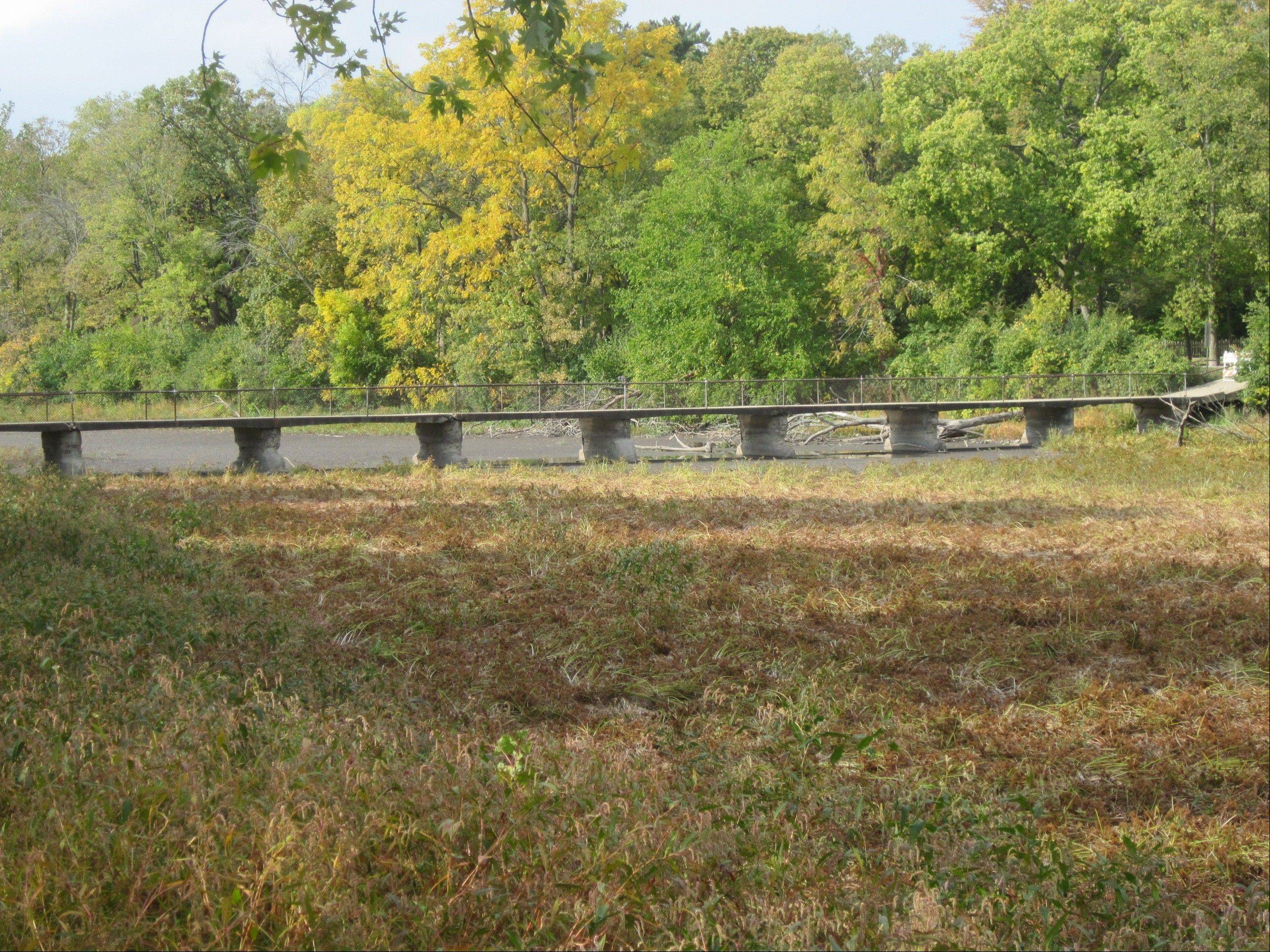 The bridge from the island to the west bank of the Fox River in the Fabyan Forest Preserve in Geneva has been deemed unsafe, and closed this week.