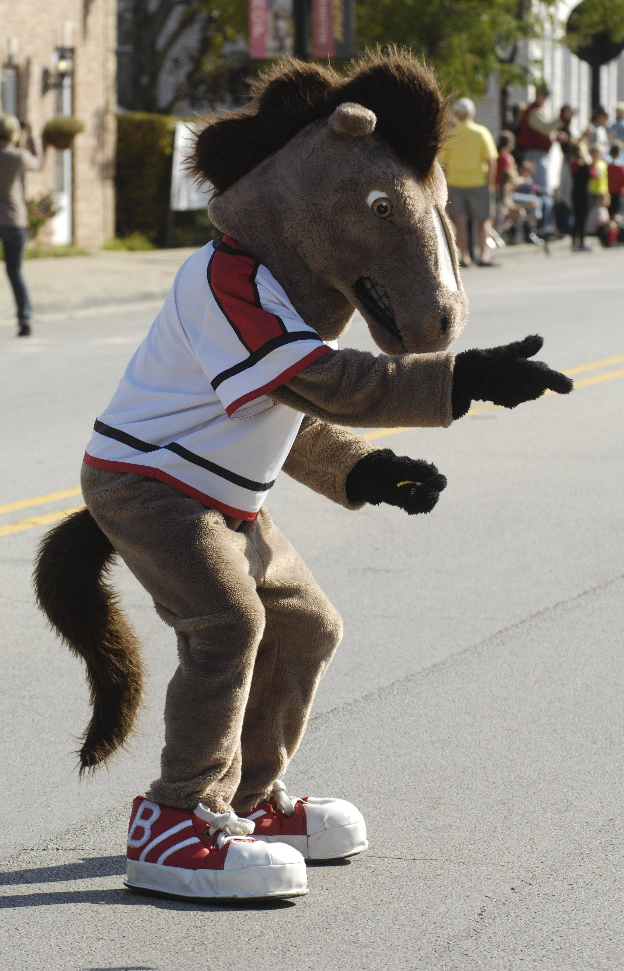 The Bronco mascot entertains children during the Barrington High School homecoming parade route Saturday.