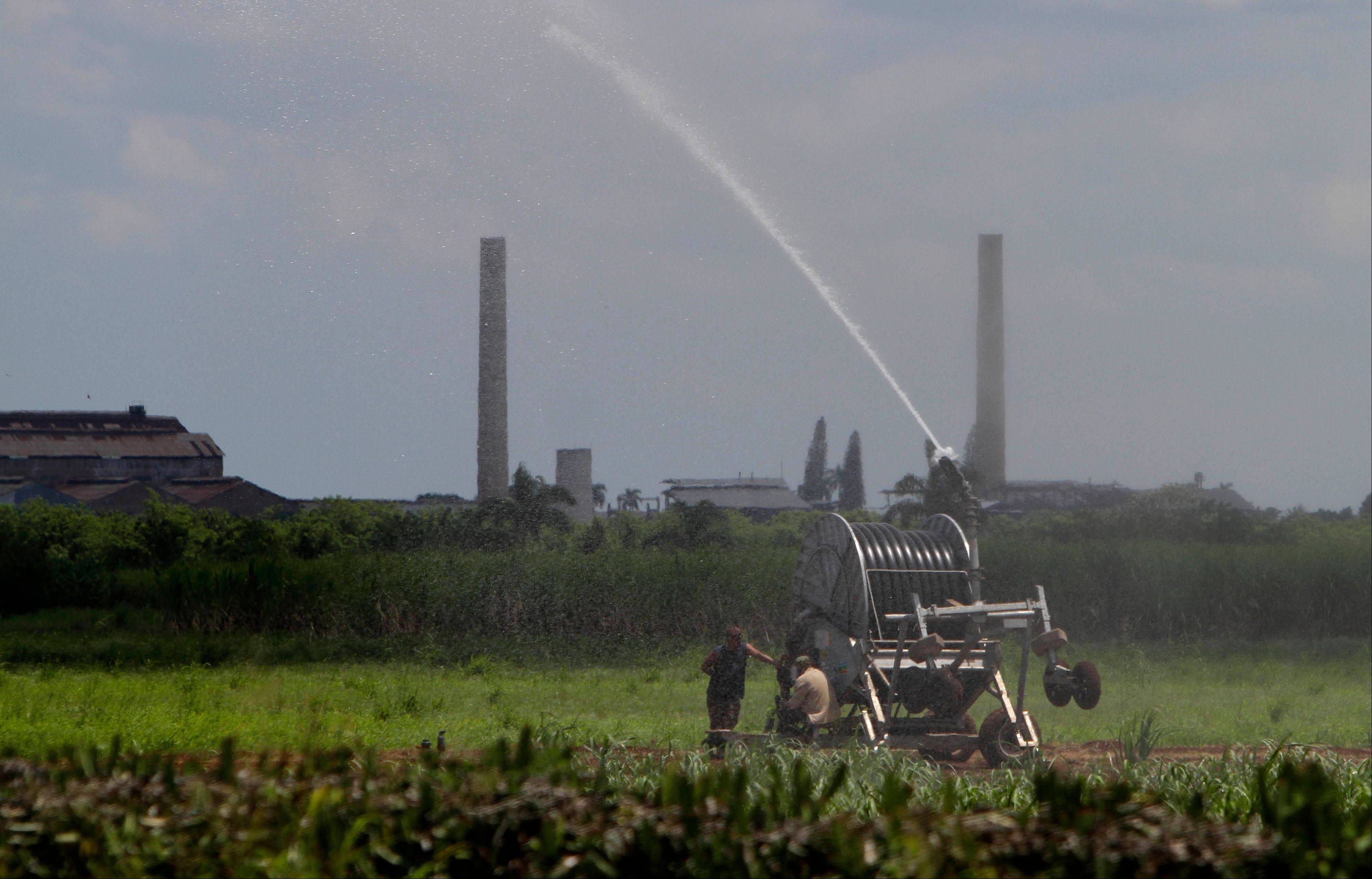 Workers irrigate a sugar cane field in Jaronu, Cuba. Just two years ago, Cuba's sugar industry was on its knees after the worst harvest in more than a century. Now Cuba's signature industry is showing signs of life. Hulking processing plants are coming back online, and the harvest is growing by double digits each year, a boon to rural towns like Jaronu.