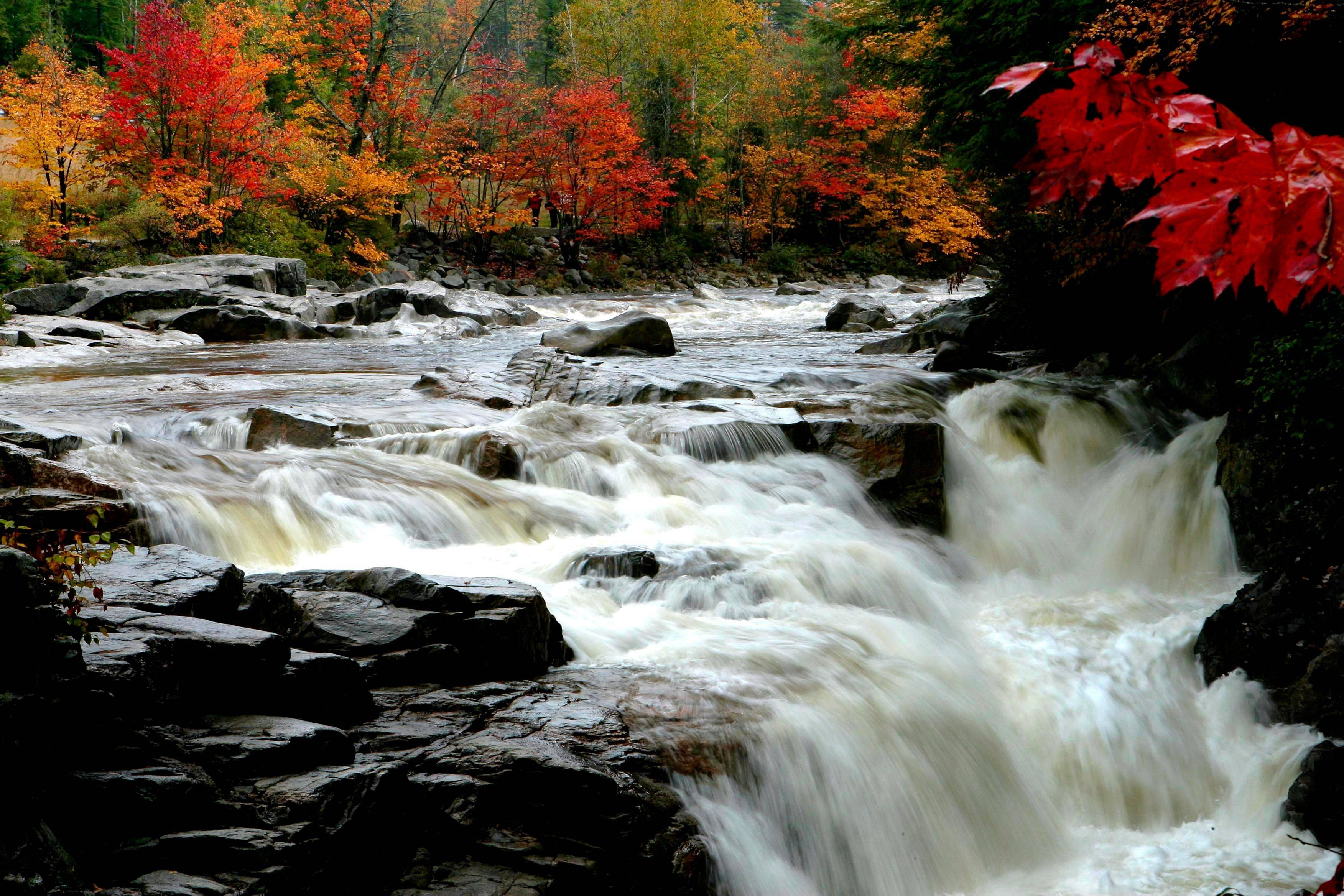 Leaves begin to change color along the Swift River off the Kancamagus Highway in Albany, N.H. The scenic highway goes through the White Mountain National Forest.