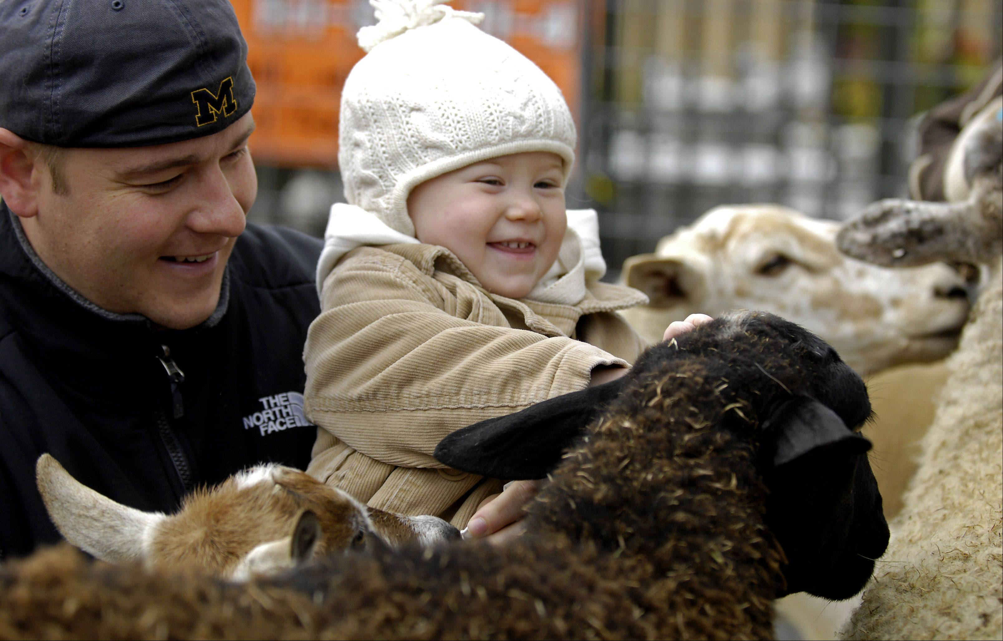 A petting zoo is a big hit with young visitors to the St. Charles Scarecrow Fest.