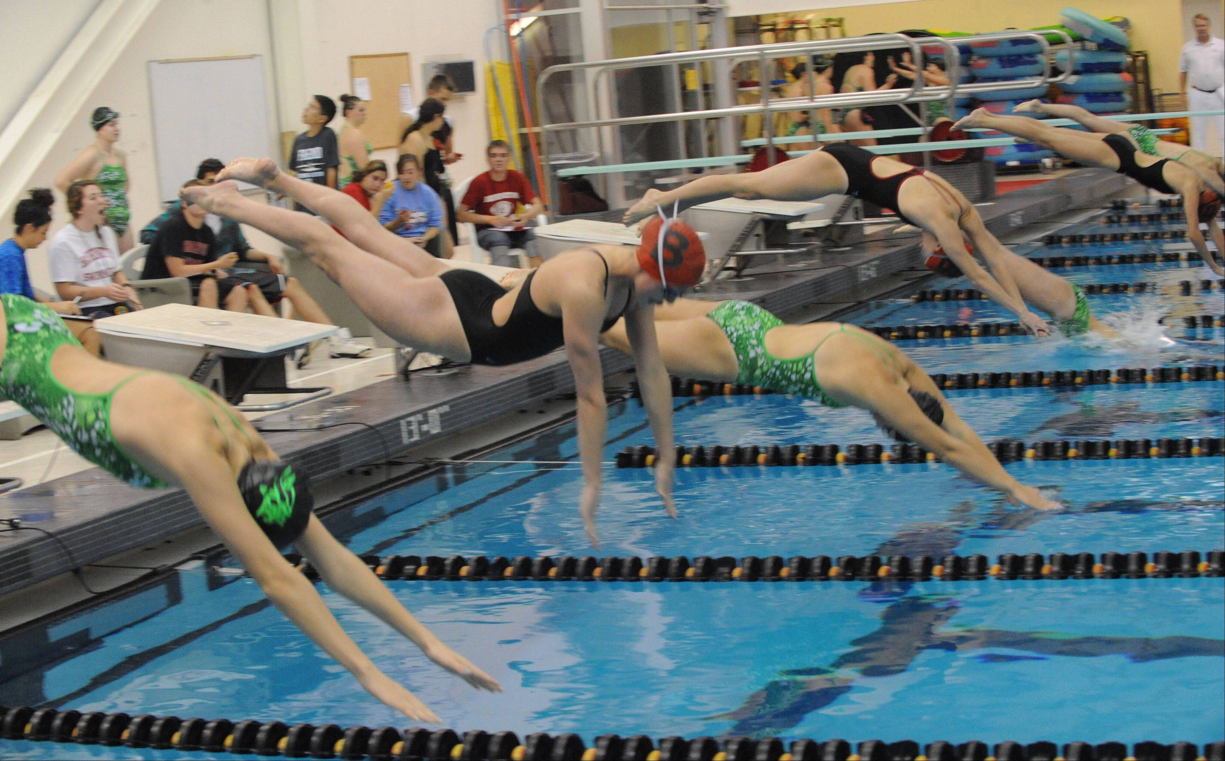 Barrington�s Mekenna Scheitlin and Fremd�s Breanna Anderson leave the blocks in the 50 free on Thursday at Barrington. Scheitlin won the race in 24.05, but Fremd edged the Fillies 101-85.