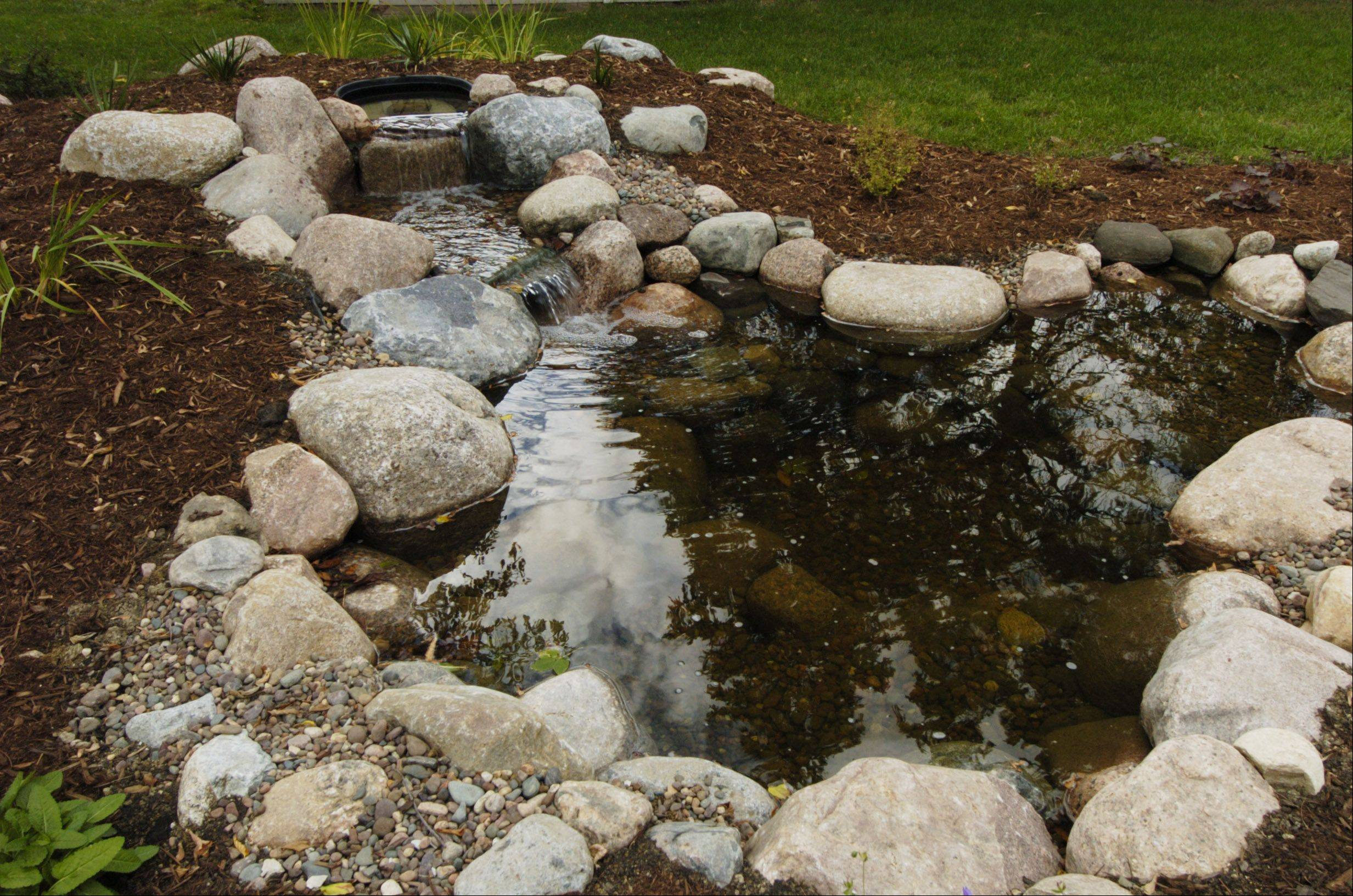 Aquascape installed this pond with two small waterfalls in Sharon and Harry Zeeck's back yard in Prospect Heights.