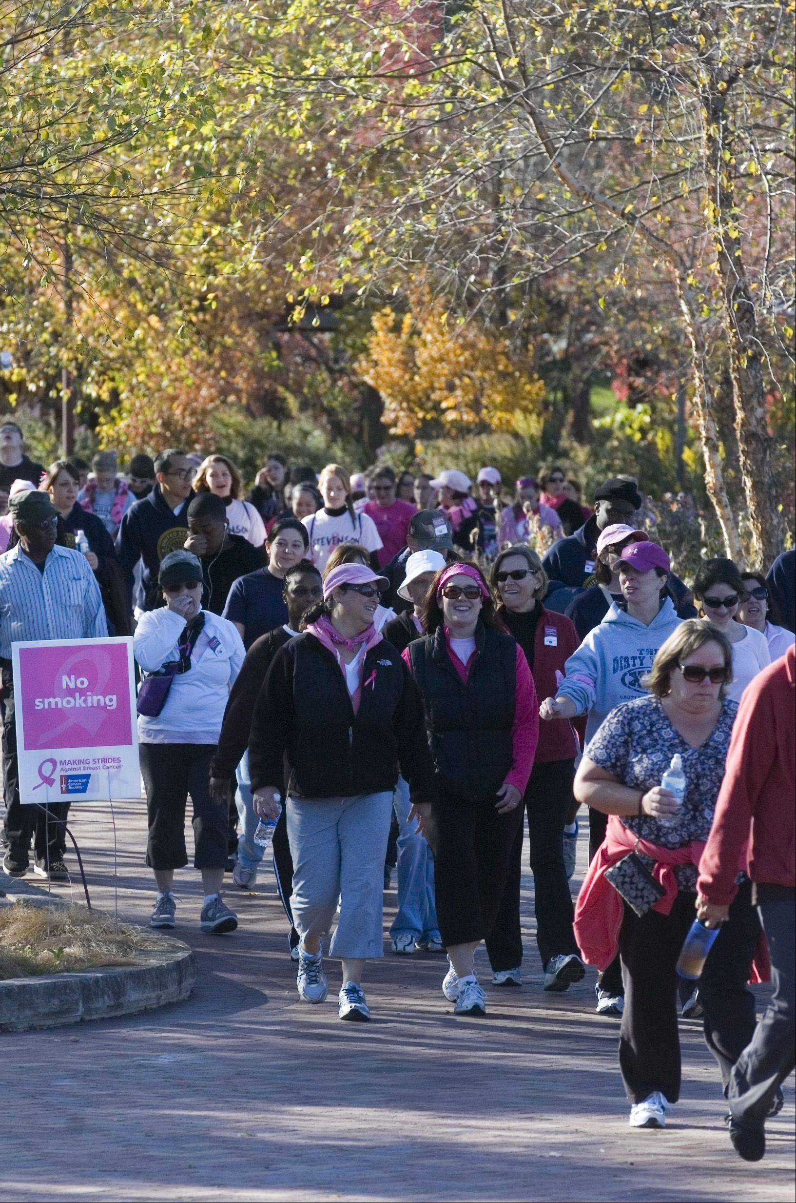 Over the next two weekends, thousands of breast cancer survivors and family members and friends who support them will unite for Making Strides Against Breast Cancer walks to benefit the American Cancer Society's research and programs.