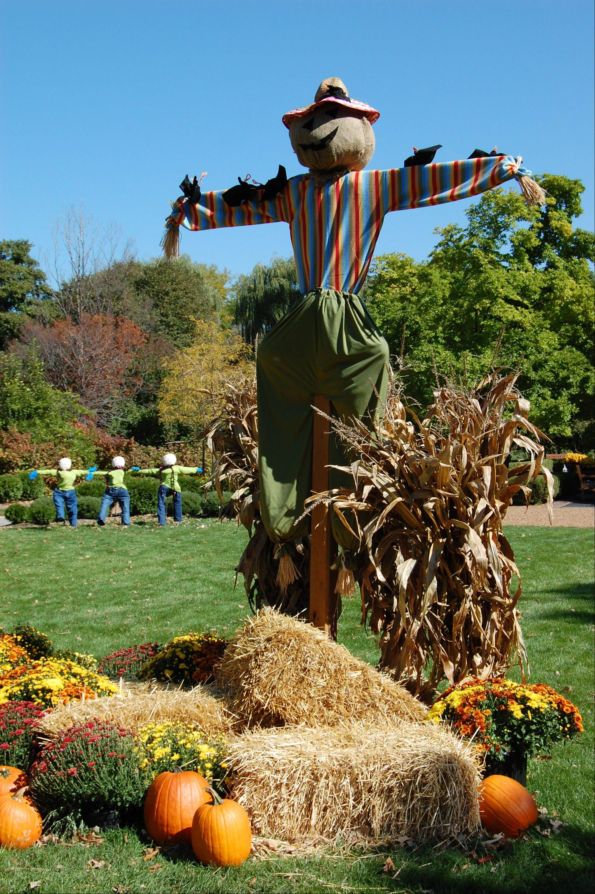 Decorative scarecrows, hayrides and pumpkin decorating are just part of the fun at Cantigny's Fall Festival.