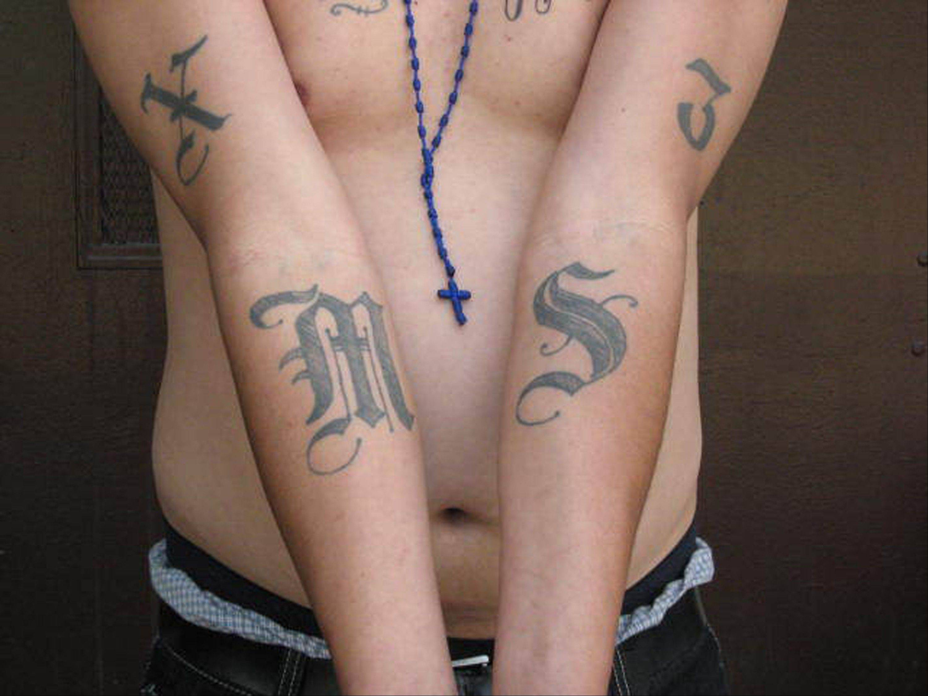This handout photo provided by US Immigration and Customs Enforcement, taken June 23, 2008 in Washington, shows an example of a tattoo of the gang Mara Salvatrucha (MS-13).