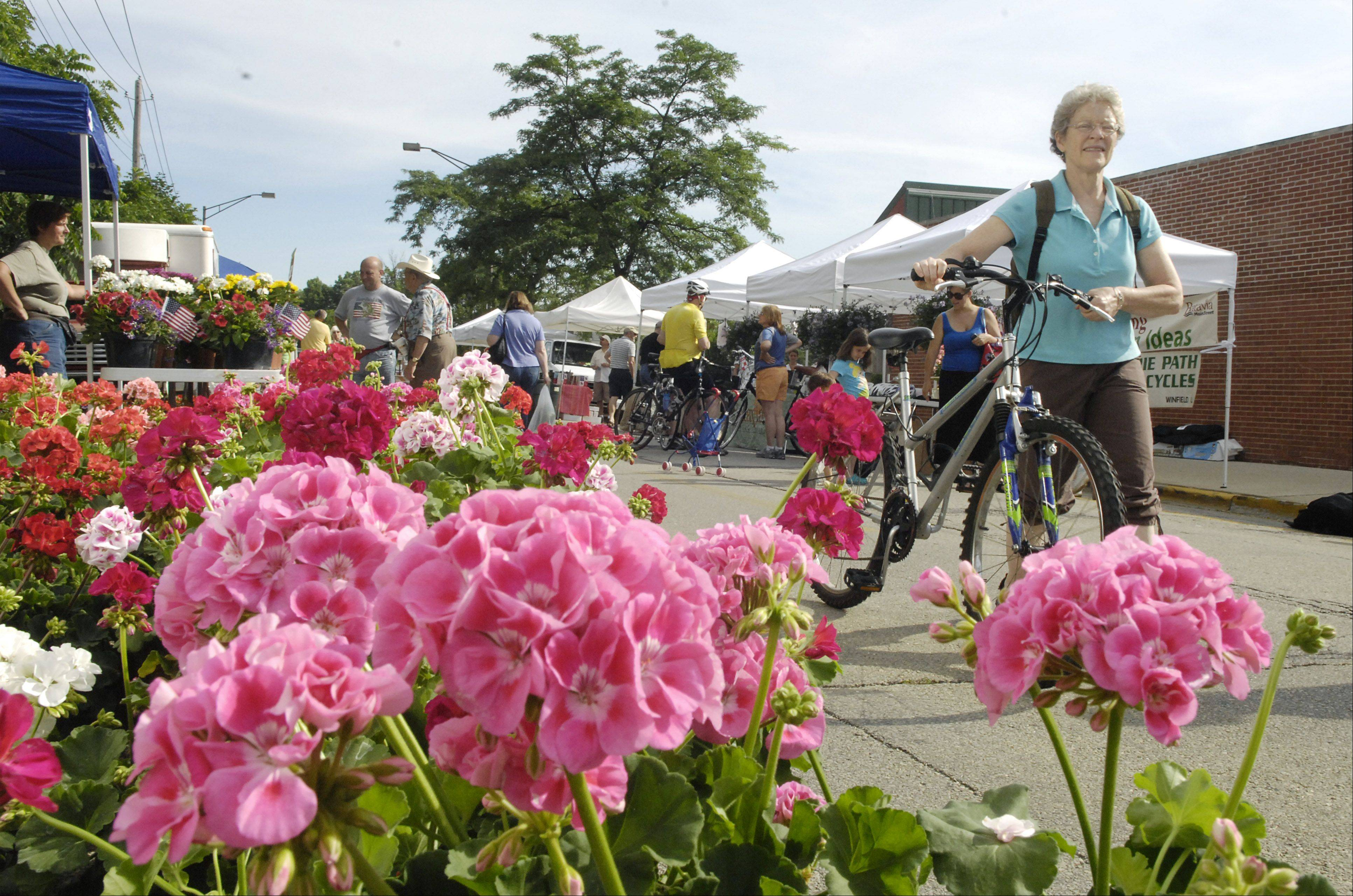 People are organizing a �cash mob� to visit the Batavia Farmers Market Saturday. The idea is to show support for local food producers and show the power of local shopping to stimulate the local economy.