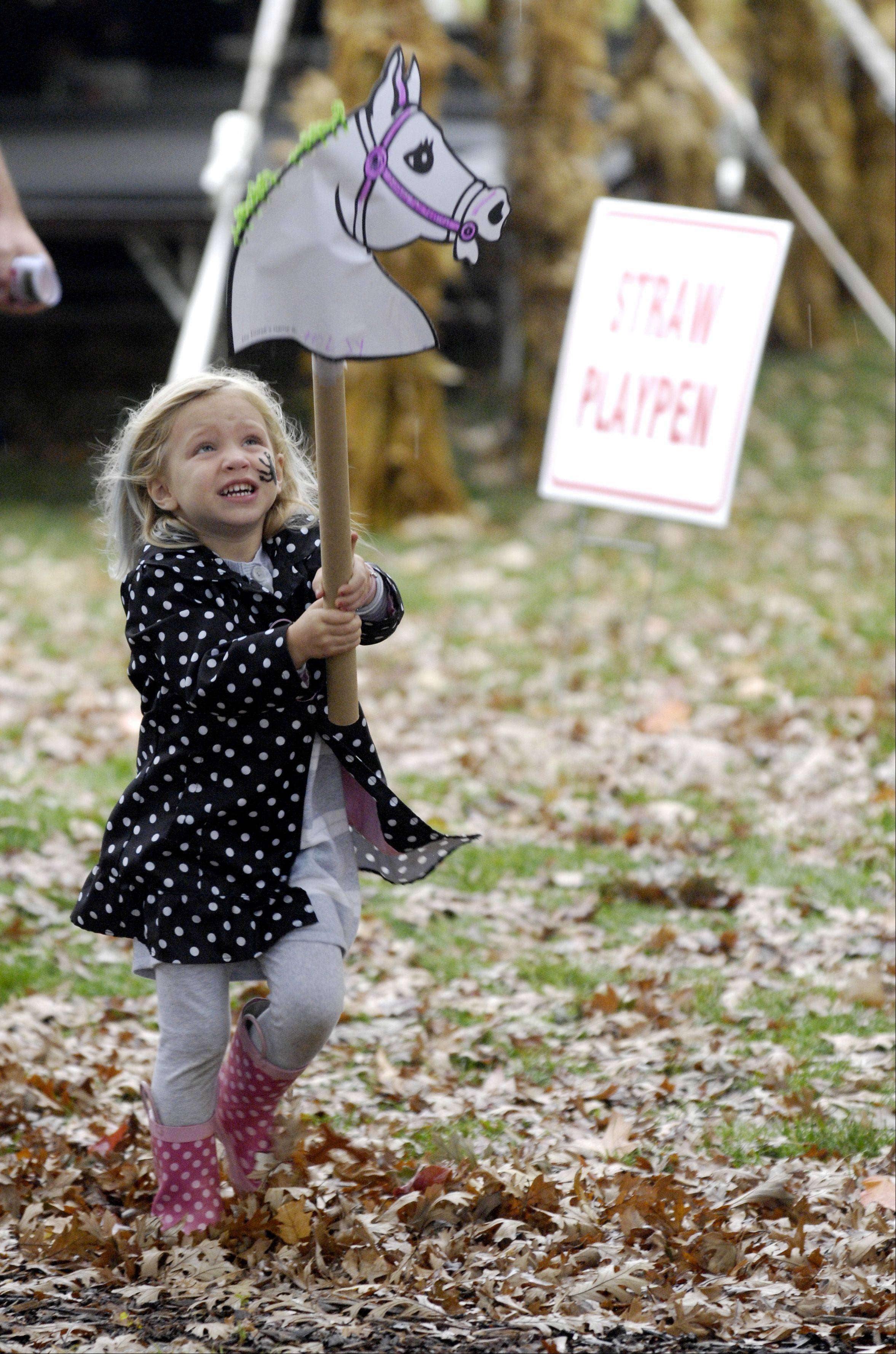 Amanda Gray, 3, of Naperville plays with the hobby horse she made while visiting the Forest Preserve District of DuPage County's annual Danada Fall Festival Sunday in Wheaton.